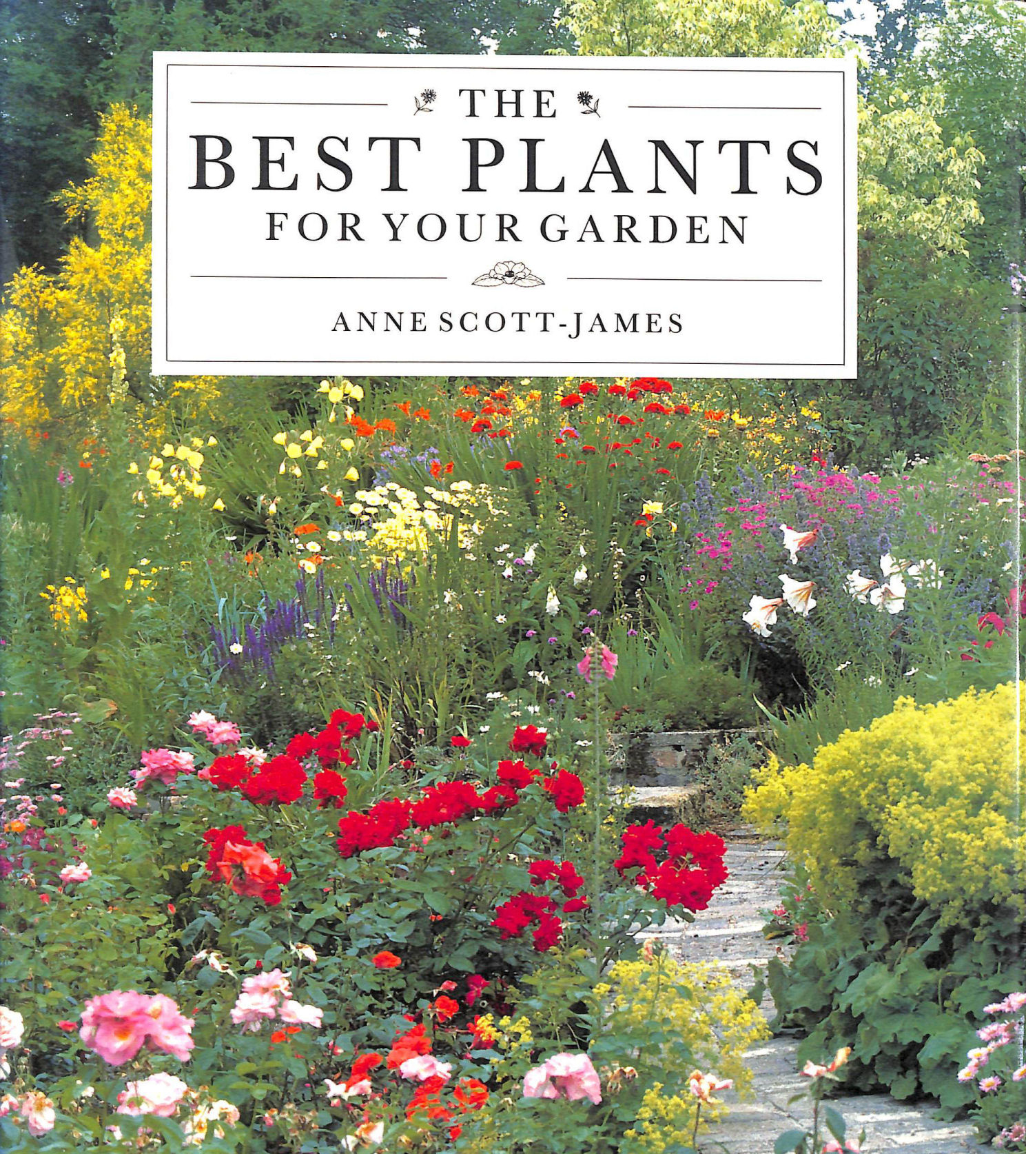 Image for The Best Plants for Garden