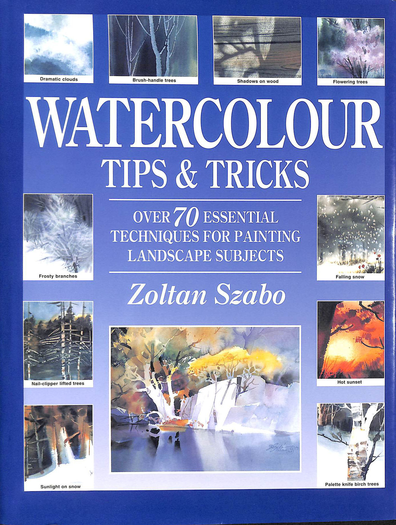 Image for Watercolour Tips and Tricks: Over 70 Essential Techniques for Painting Landscape Subjects