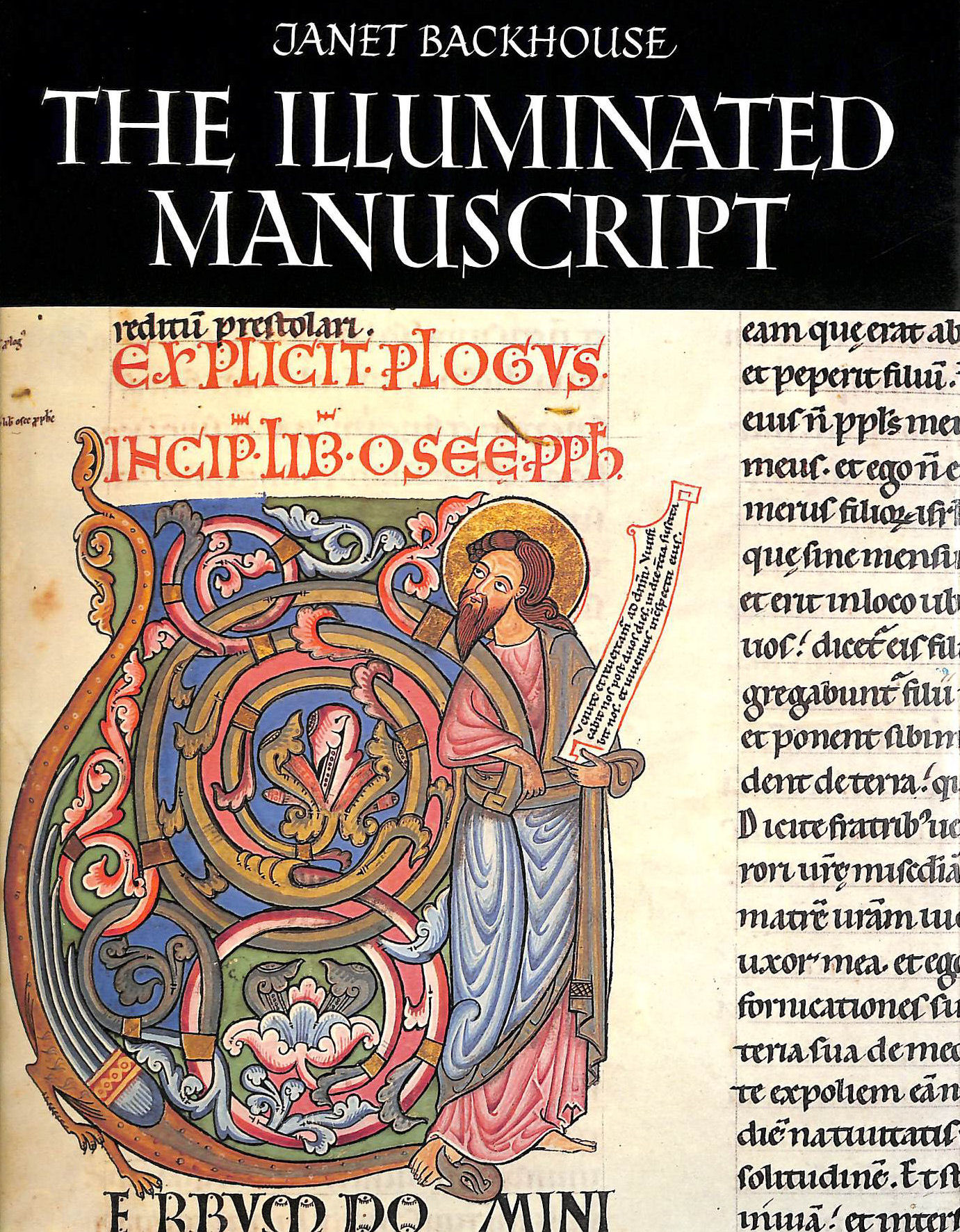 Image for The Illuminated Manuscript