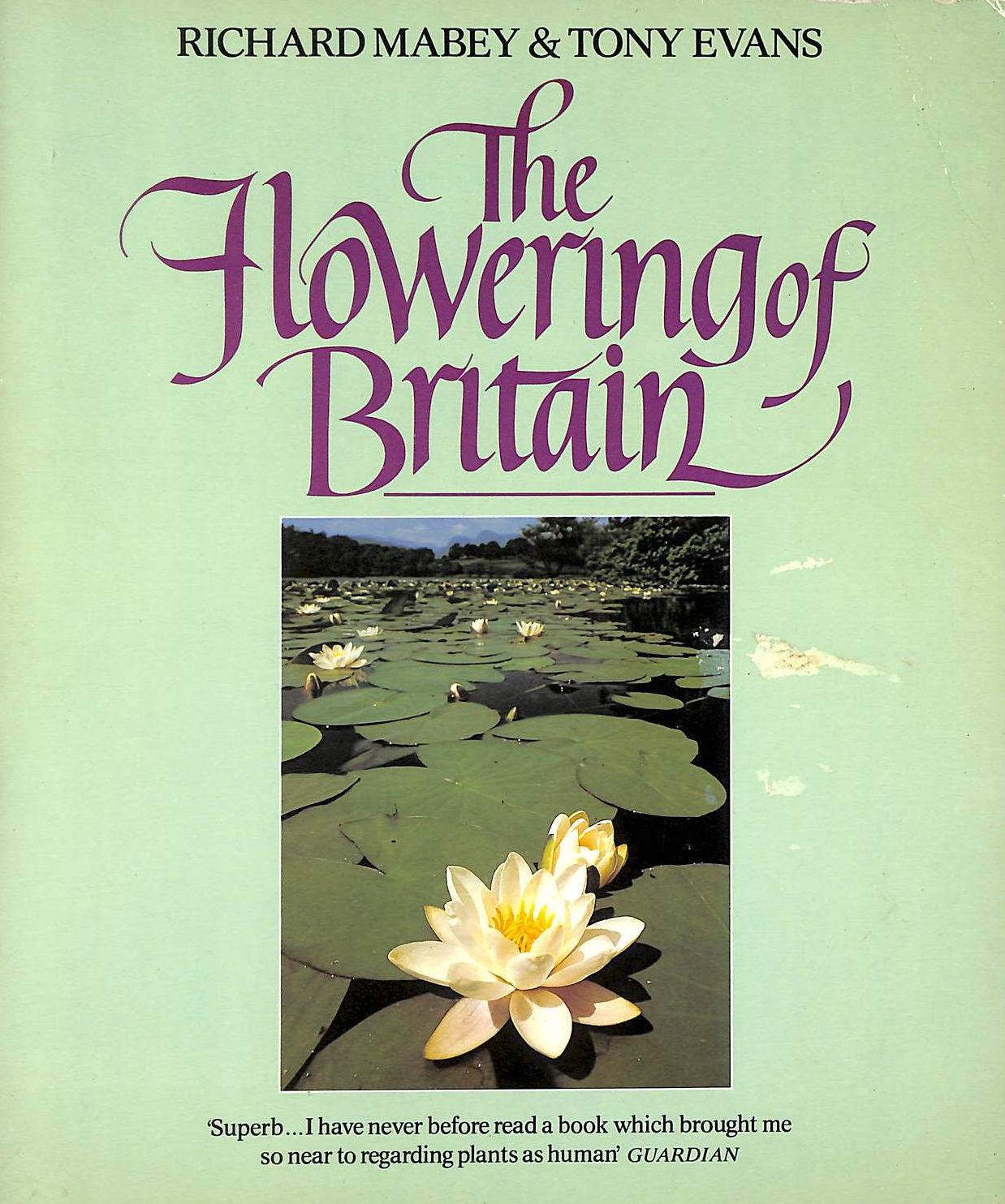 Image for Flowering of Britain