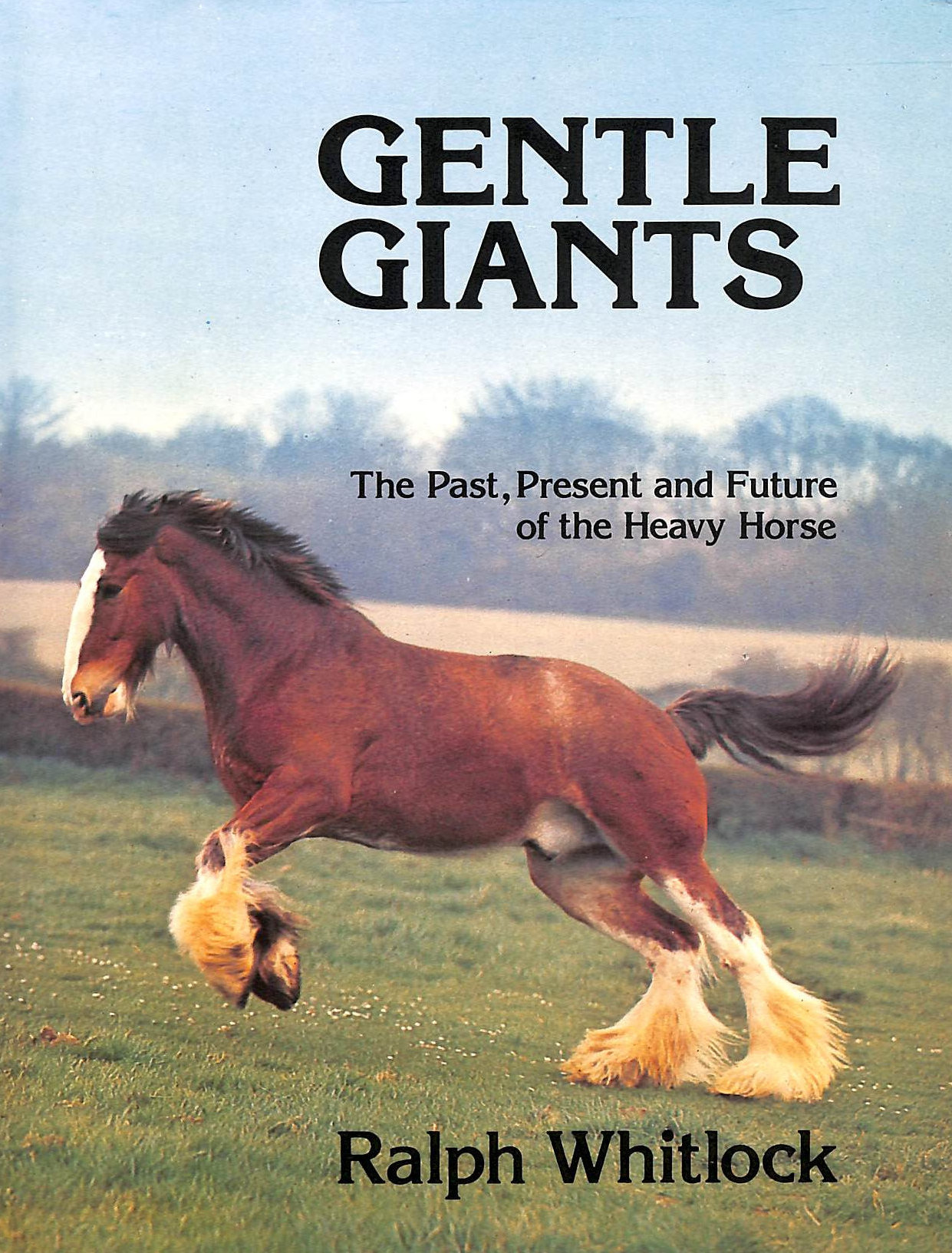 Image for Gentle Giants: The Past, Present and Future of the Heavy Horse