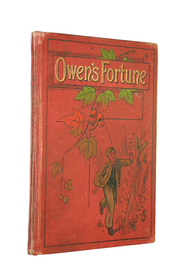 Image for Owen's Fortune
