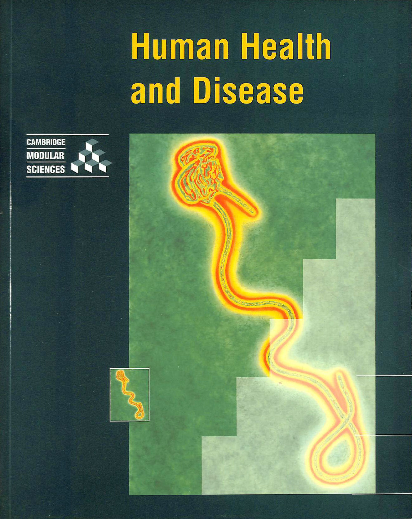Image for Human Health and Disease (Cambridge Modular Sciences)