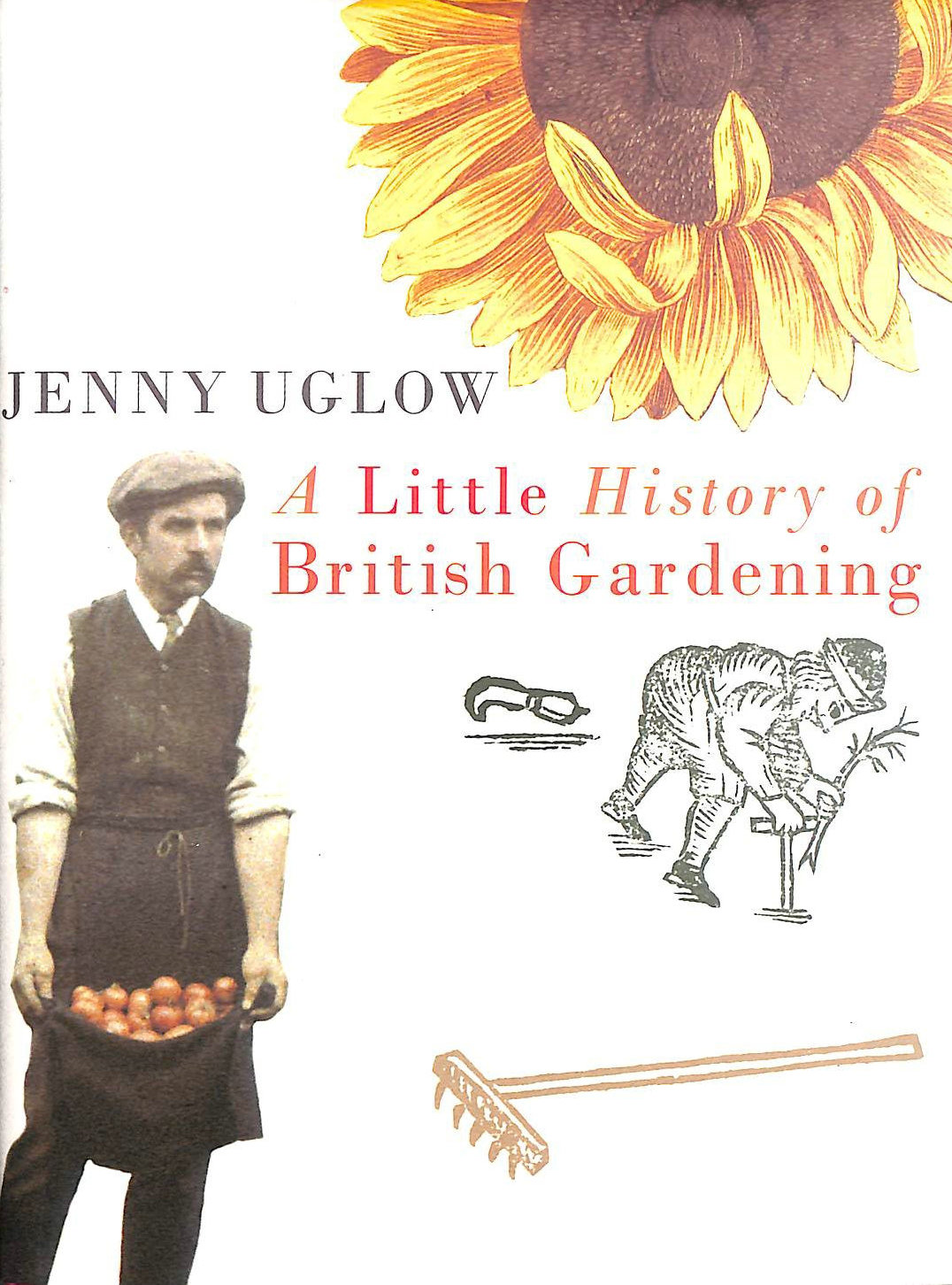 Image for A Little History of British Gardening