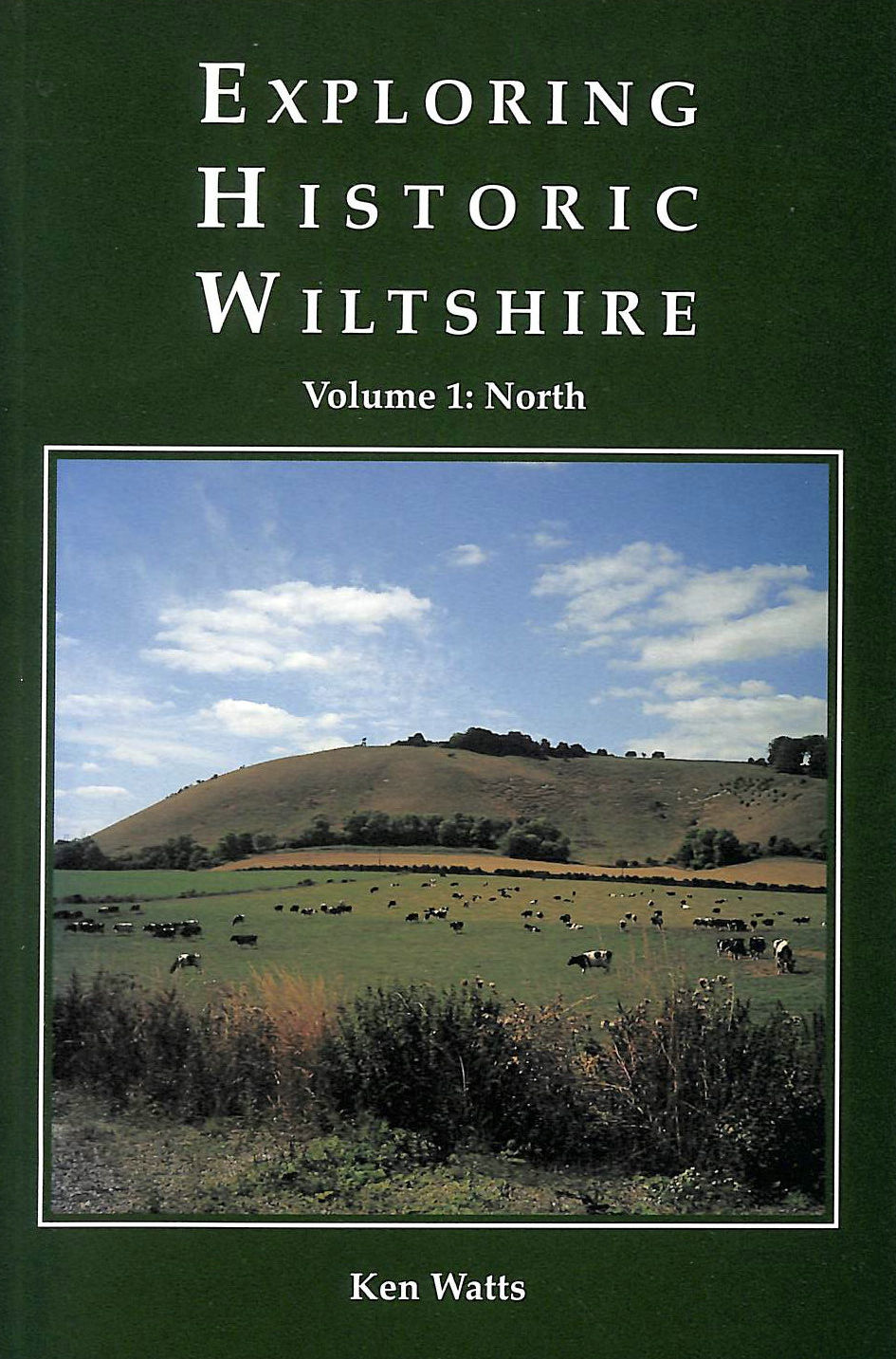 Image for Exploring Historic Wiltshire: North v. 1