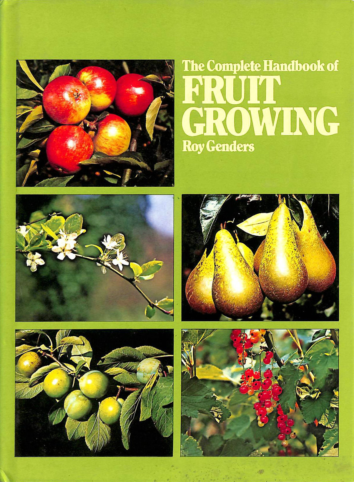 Image for The Complete Handbook of Fruit Growing.