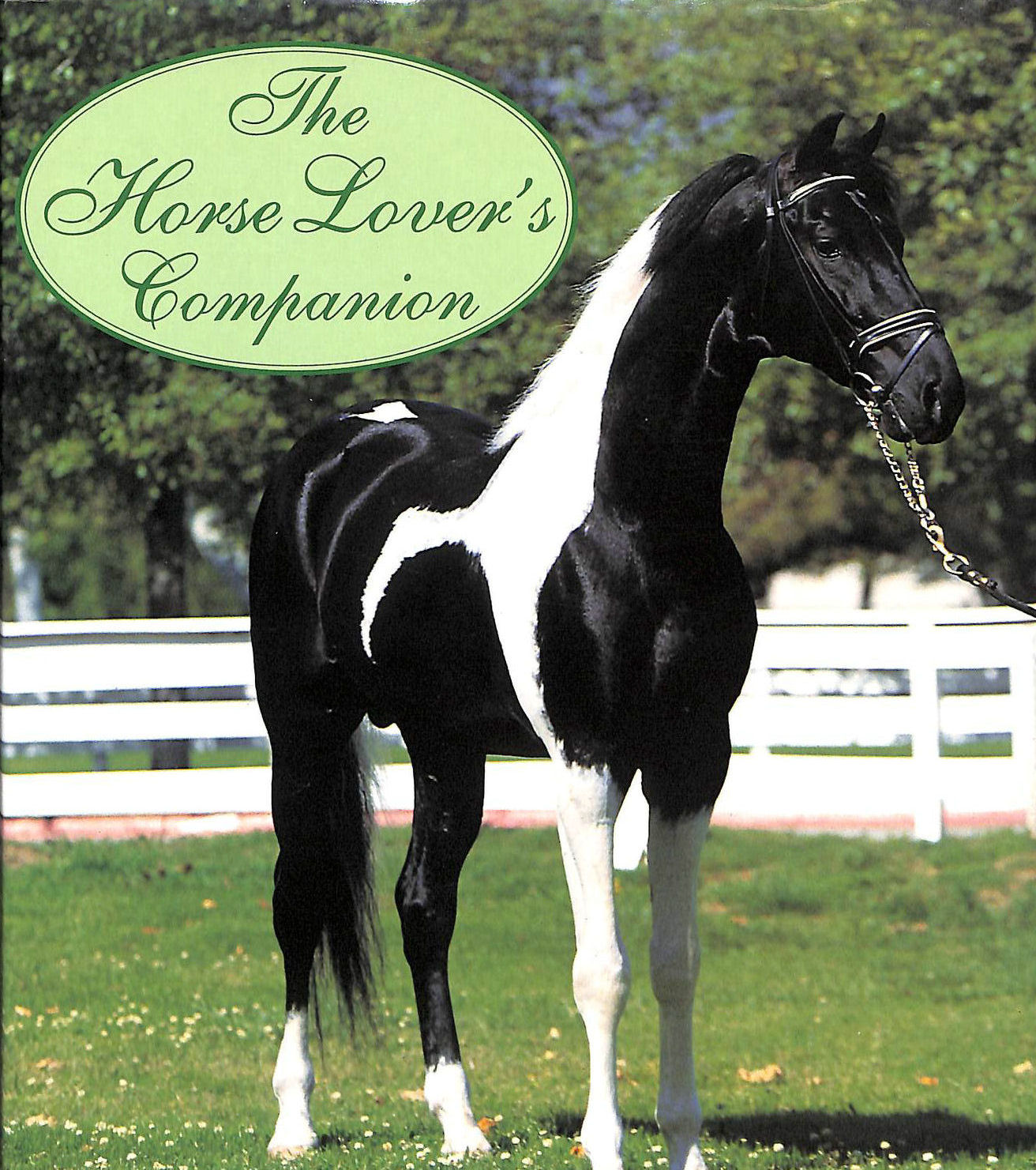 Image for The Horse Lovers Companion