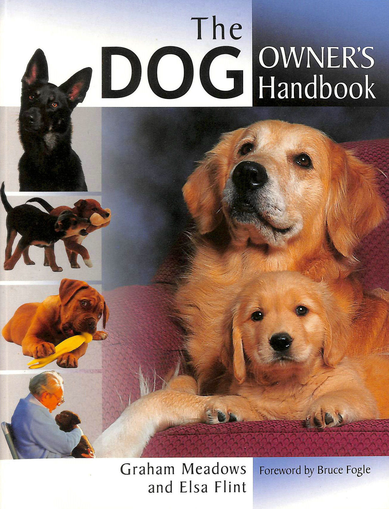Image for The Dog Owner's Handbook