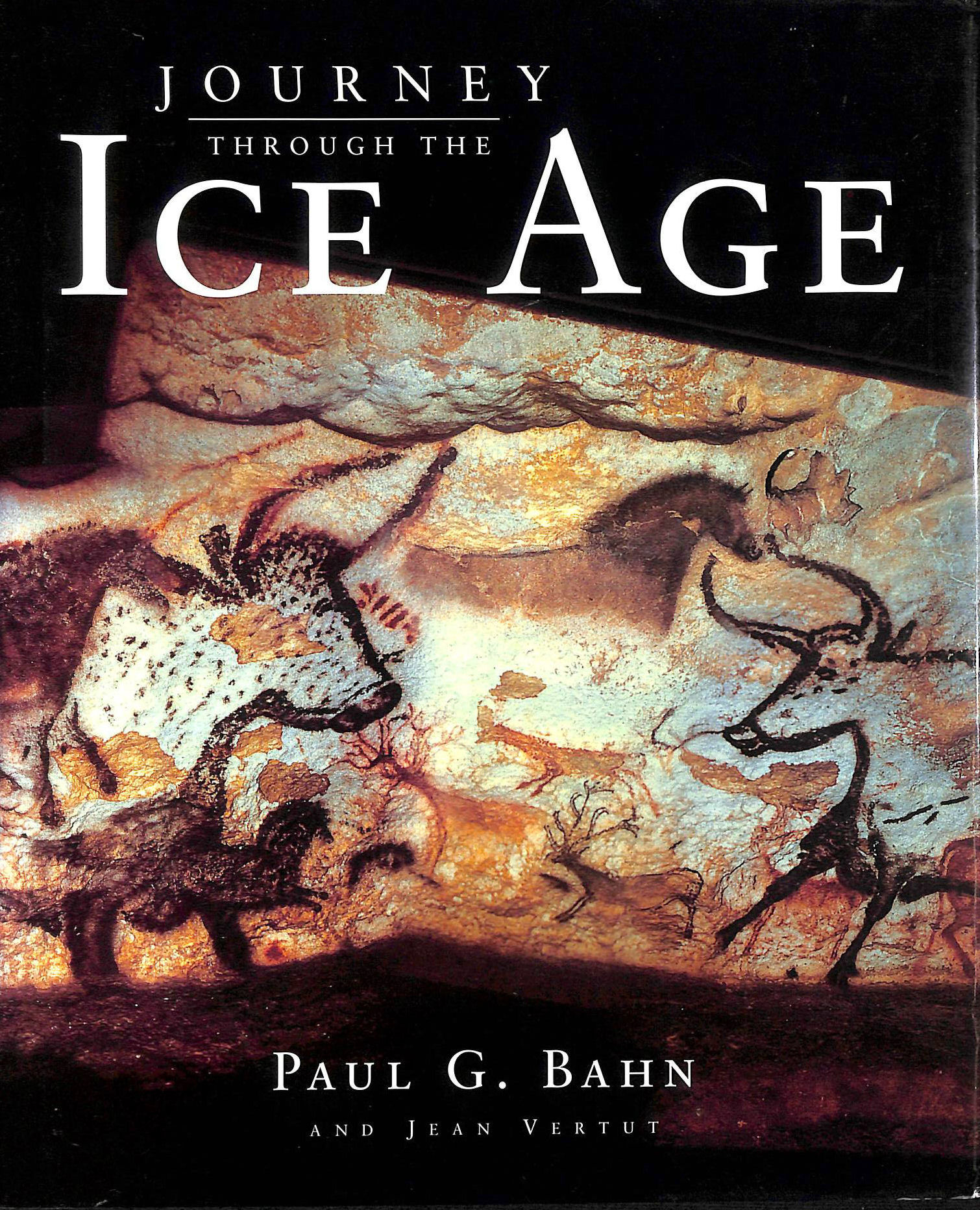 Image for Journey Through the Ice Age