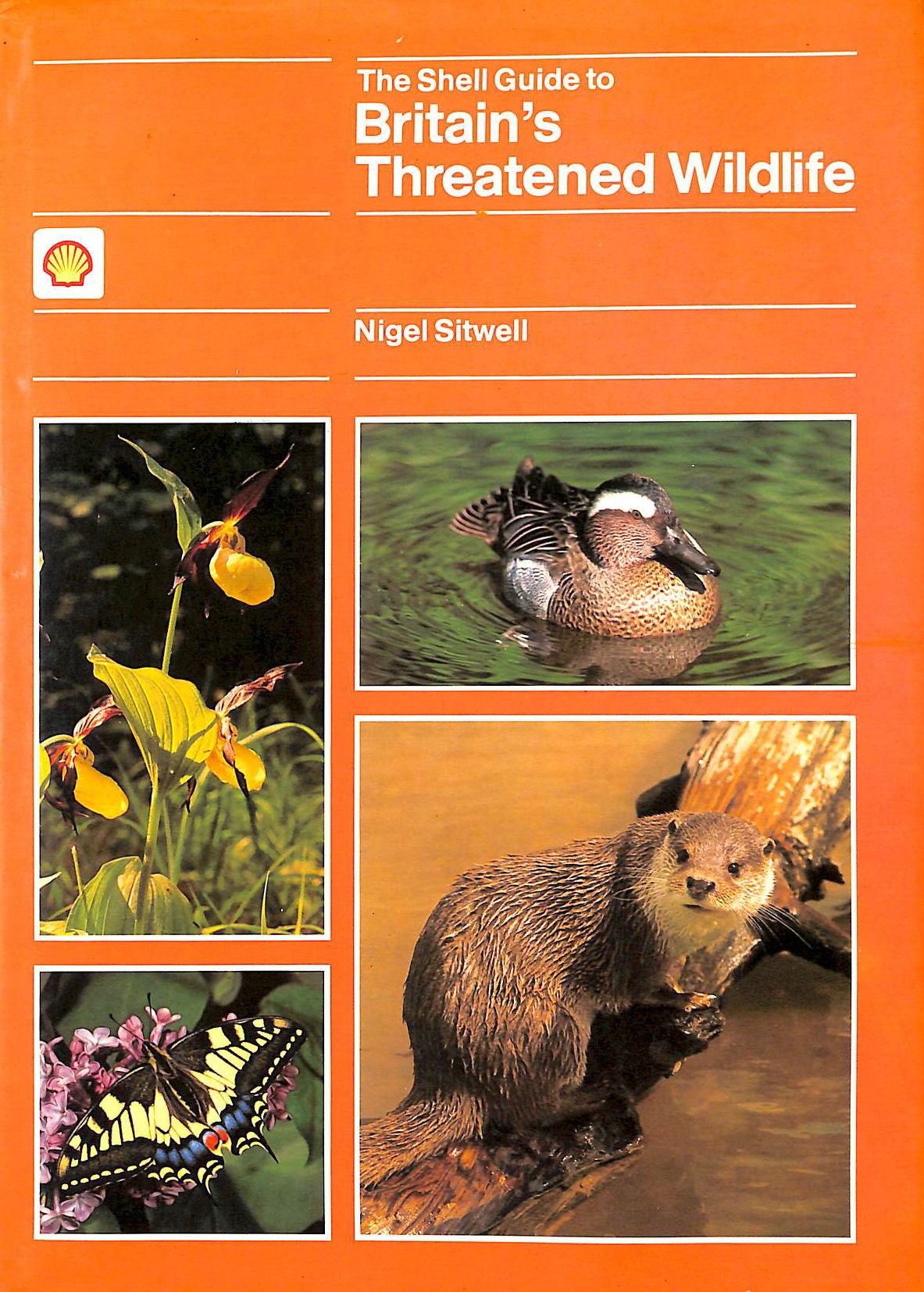 Image for Shell Guide to Britain's Threatened Wildlife