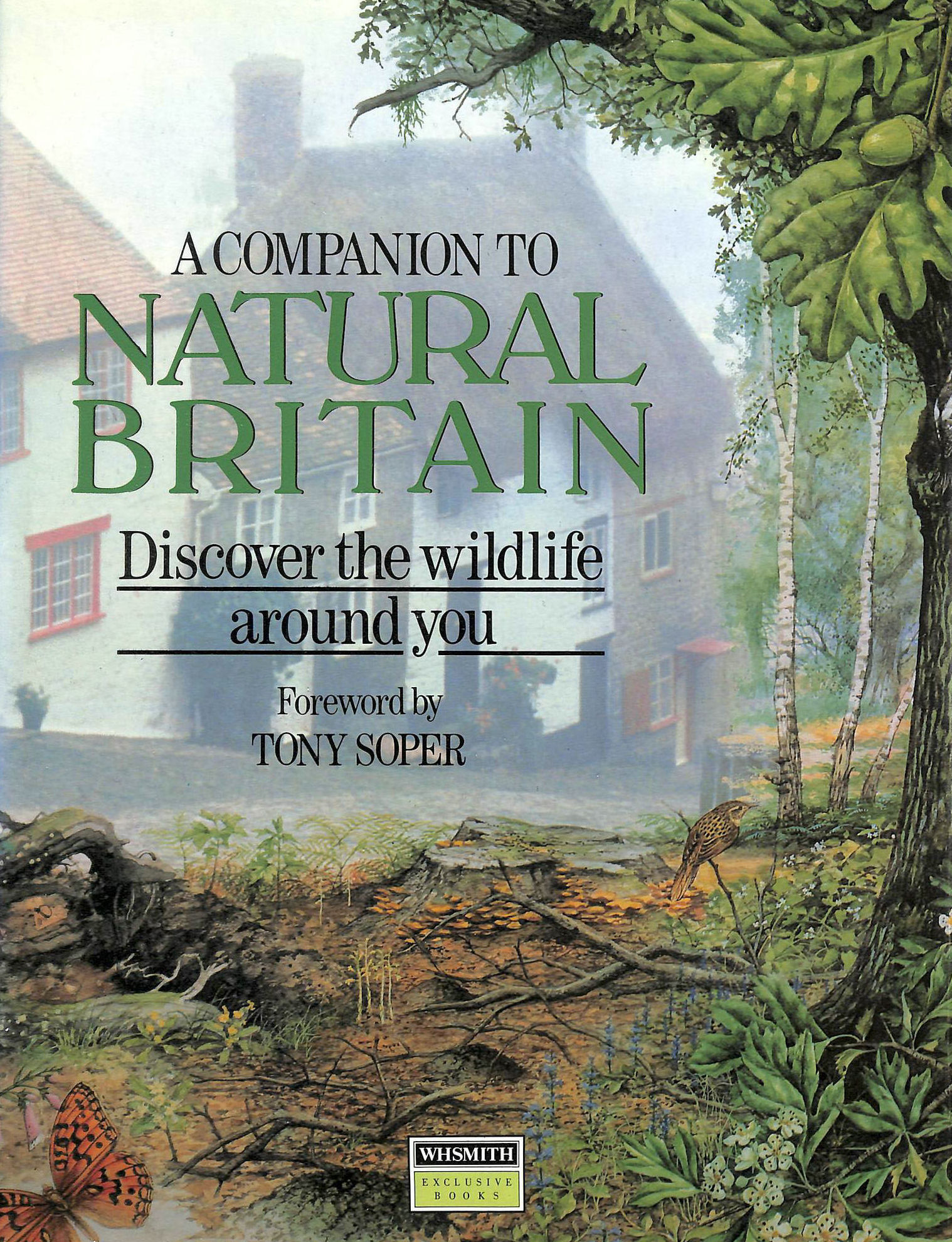 Image for A COMPANION TO NATURAL BRITAIN