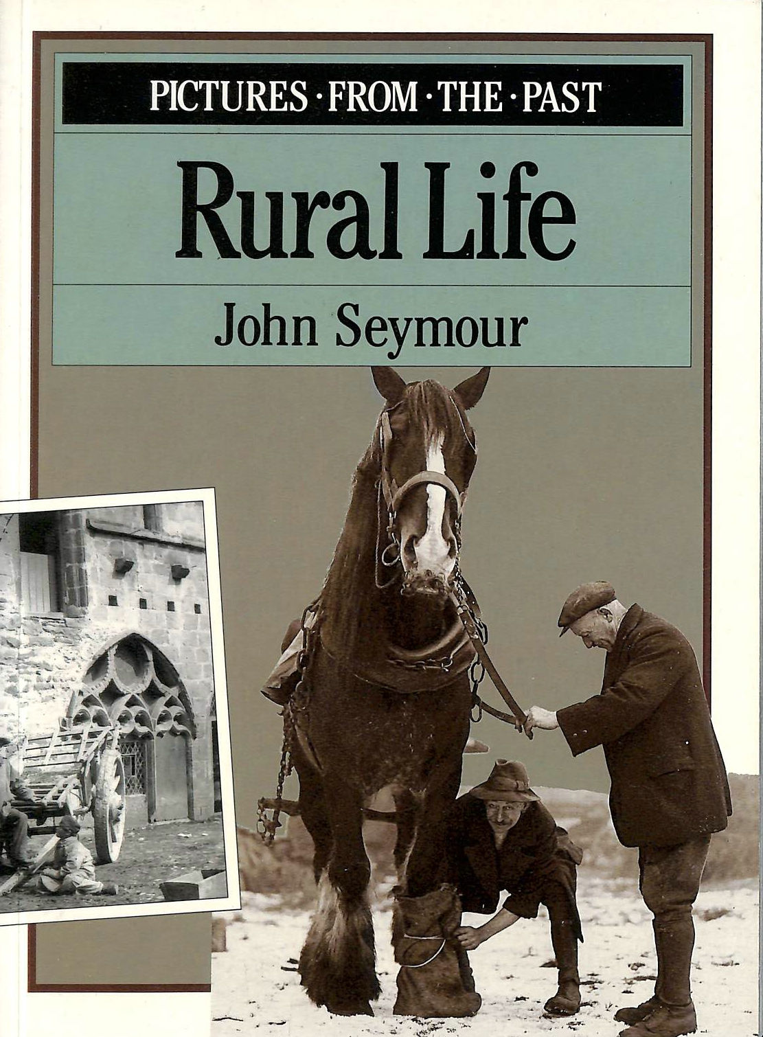 Image for Rural Life: Pictures from the Past