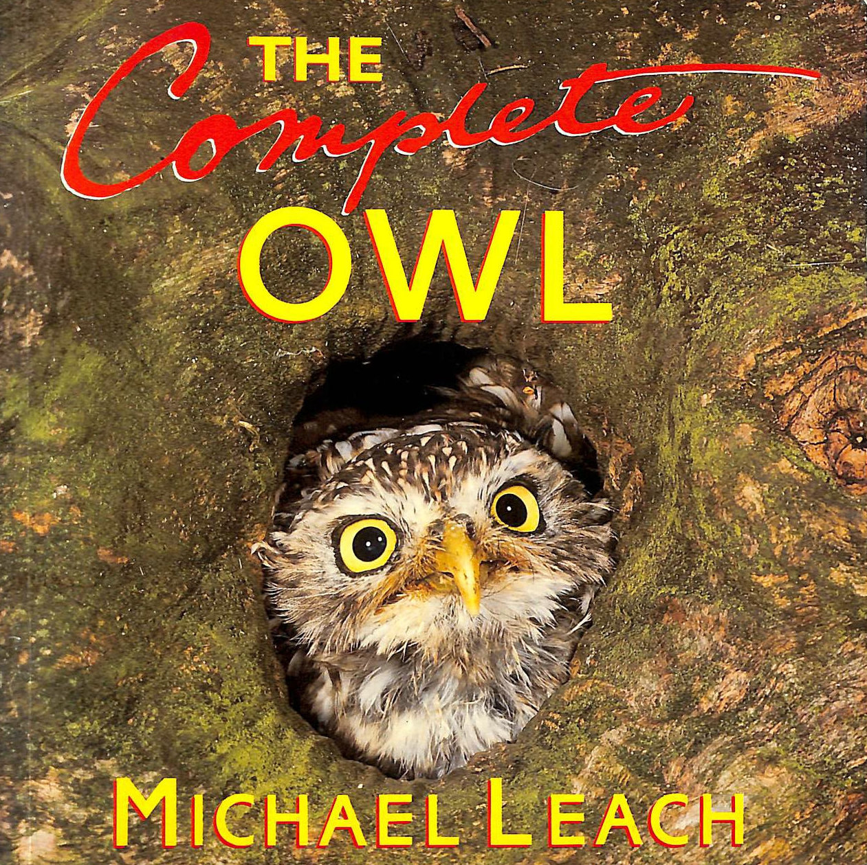 Image for The Complete Owl