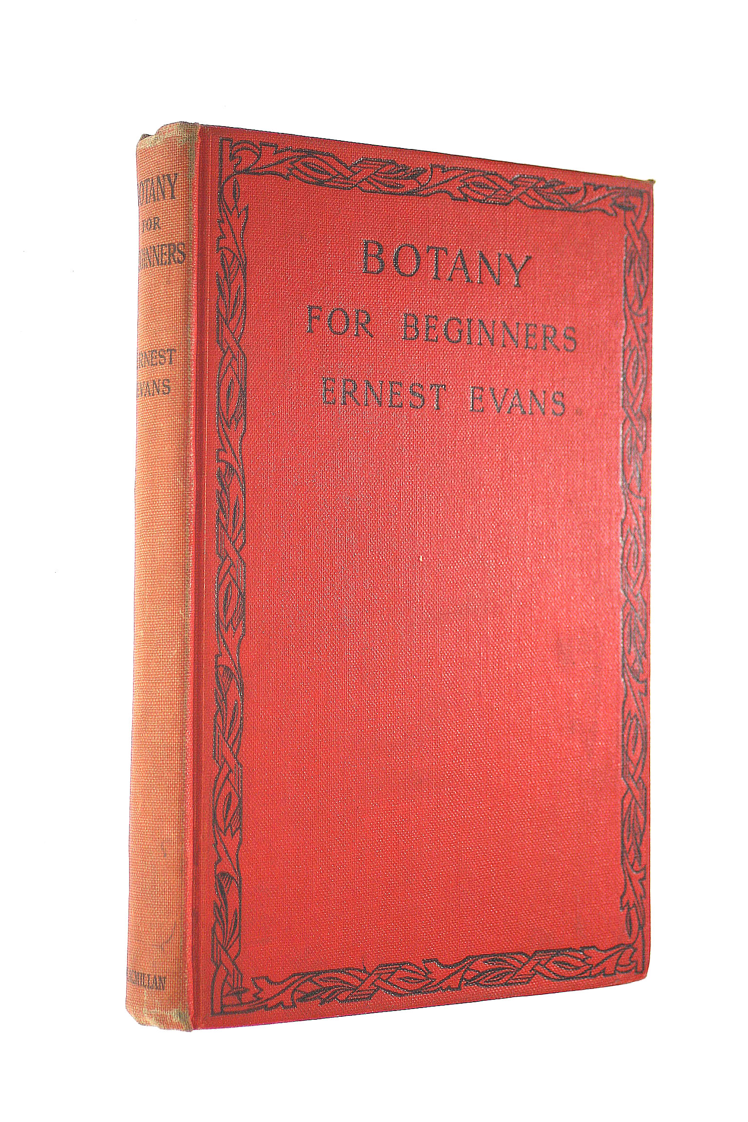 Image for Botany for Beginners,  New and revised edition