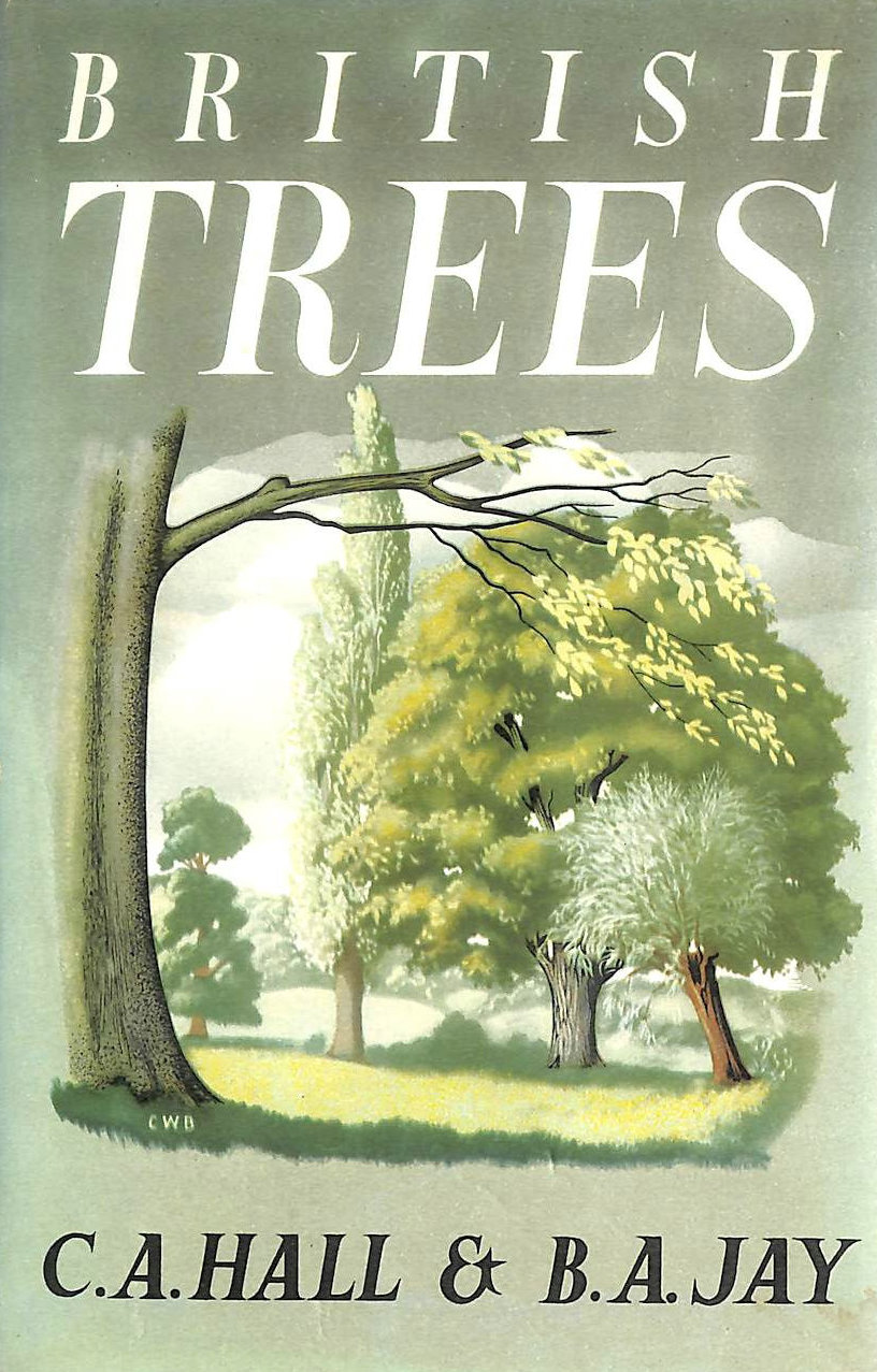 Image for British Trees