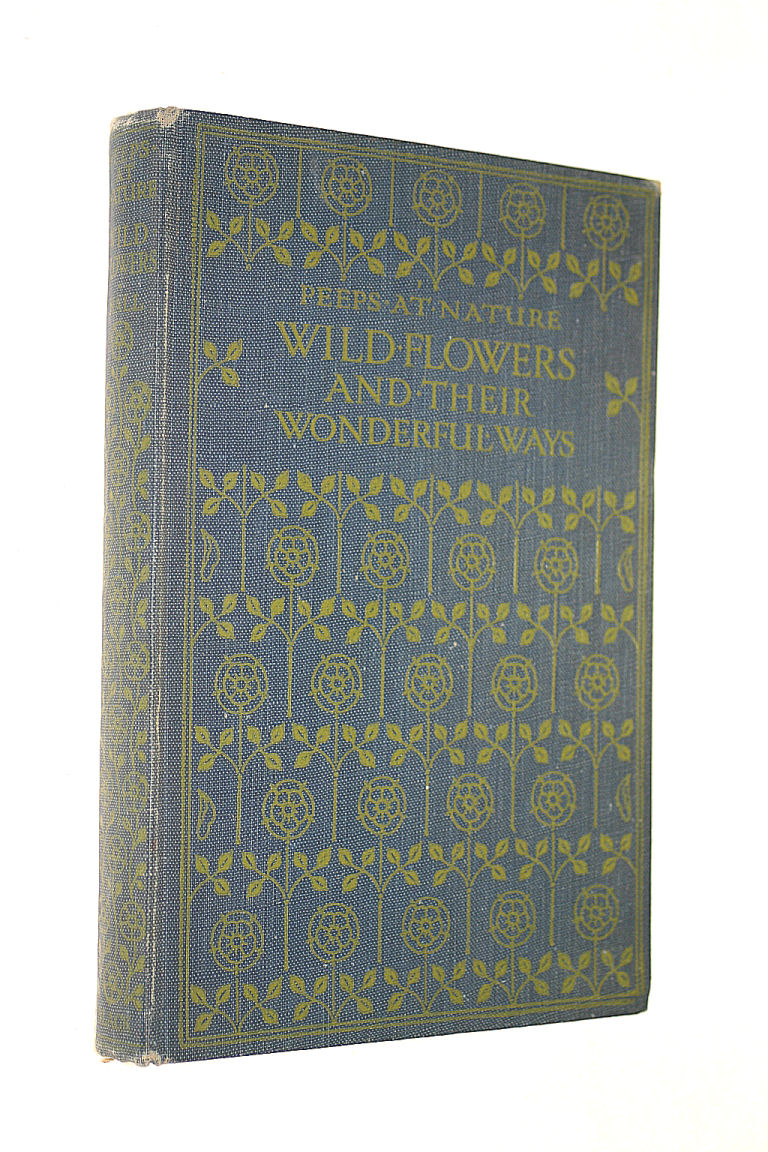 Image for Wild Flowers and Their Wonderful Ways
