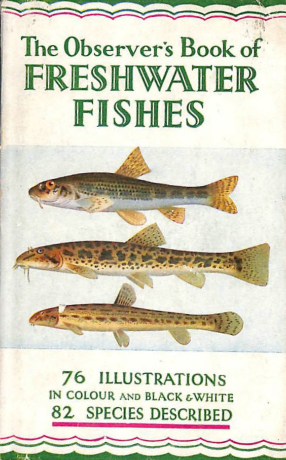 Image for The Observer's Book of Freshwater Fishes. 1961