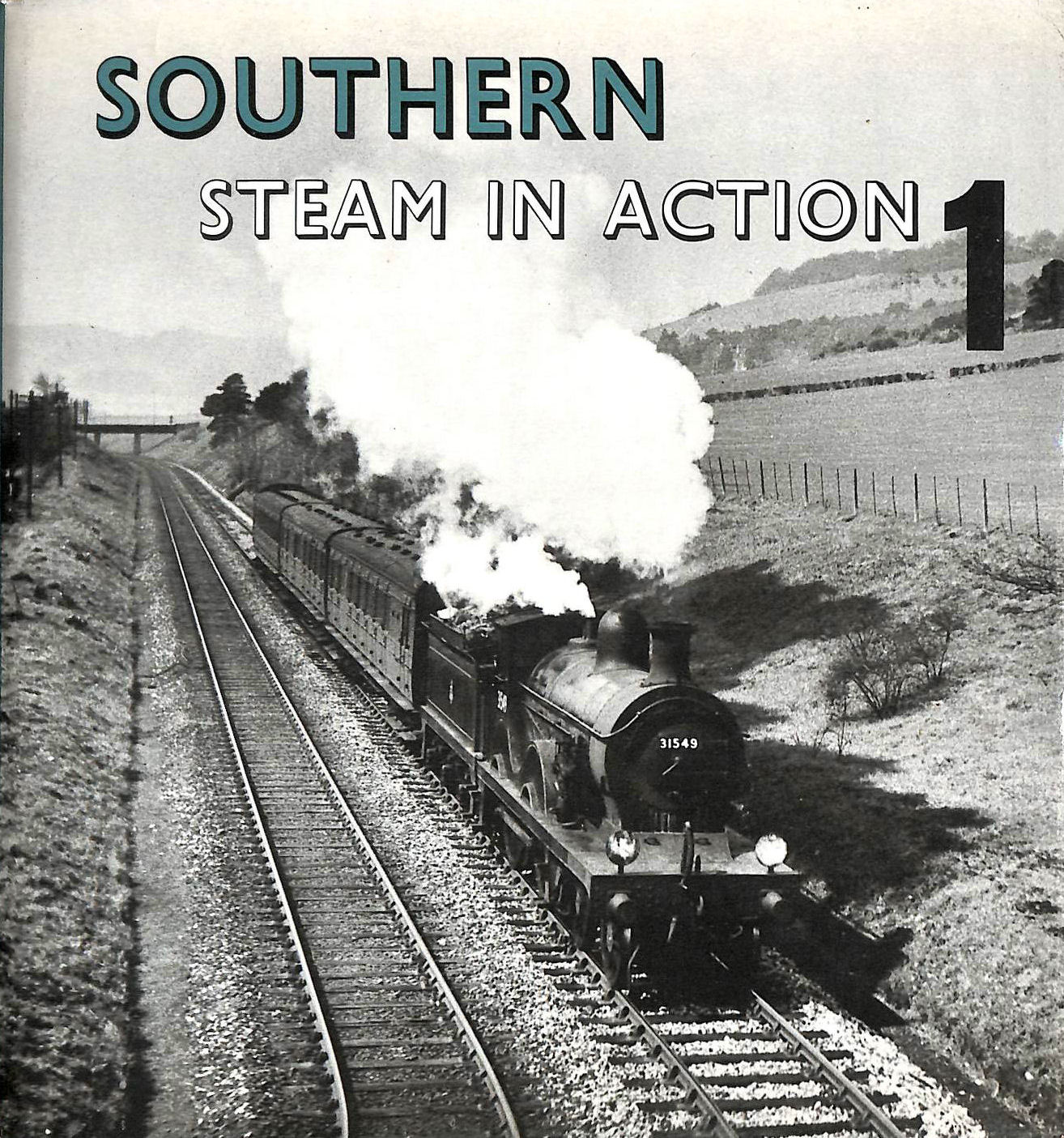 Image for Southern Steam in Action: v. 1