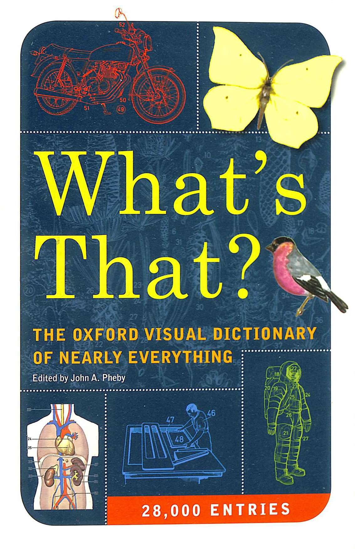 Image for What's That? The Oxford Visual Dictionary pf nearly Everything
