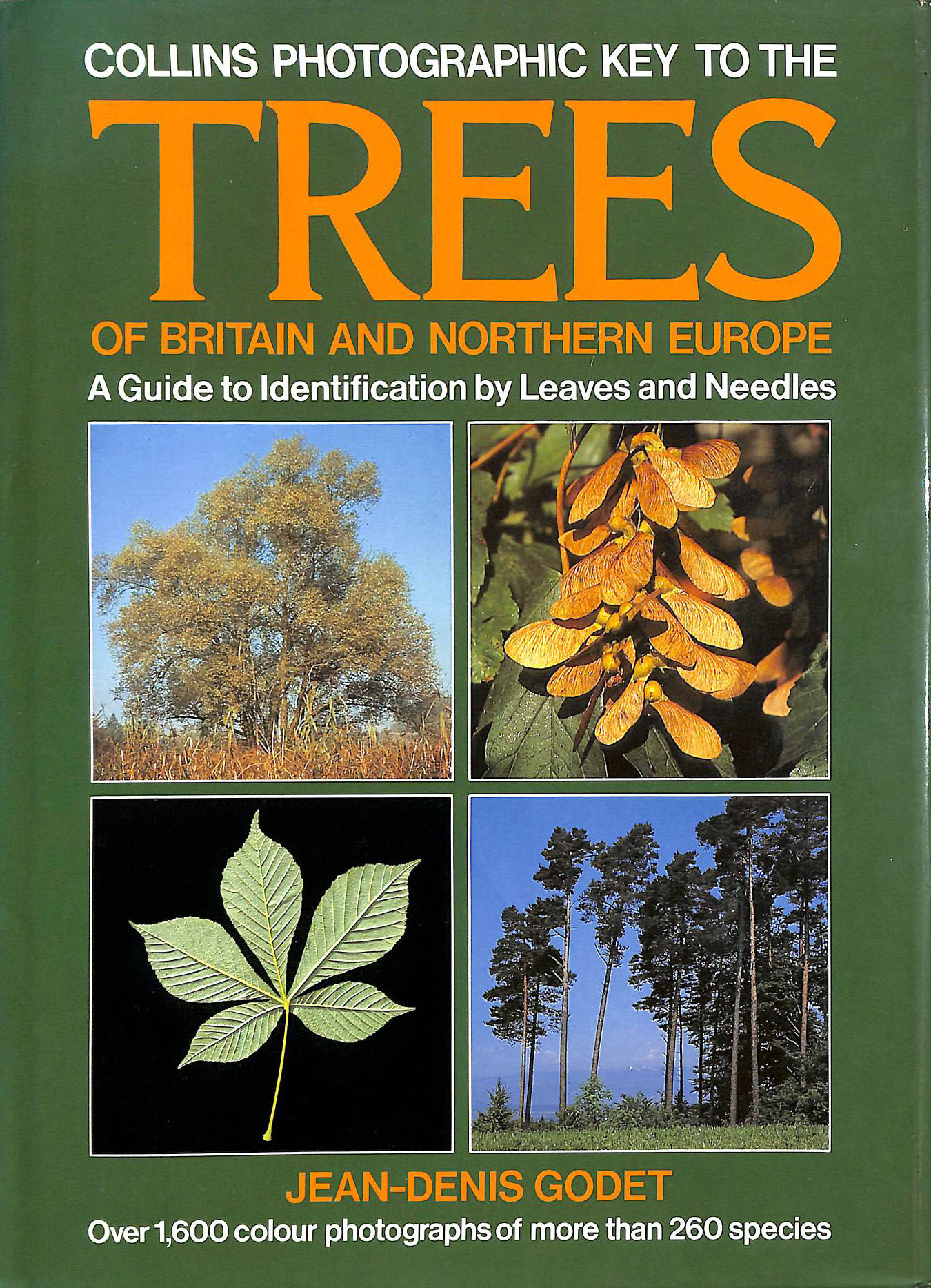 Image for Photographic Key to the Trees of Britain and Northern Europe (Collins Field Guide)