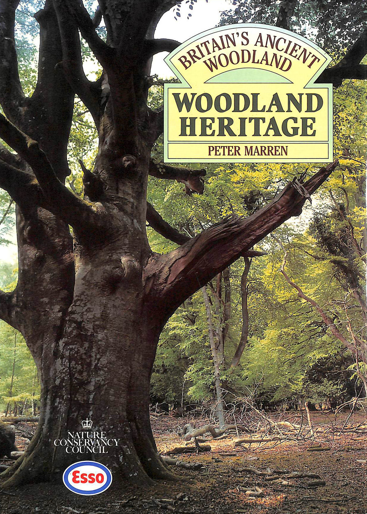 Image for Woodland Heritage (Britain's Ancient Woodlands S.)