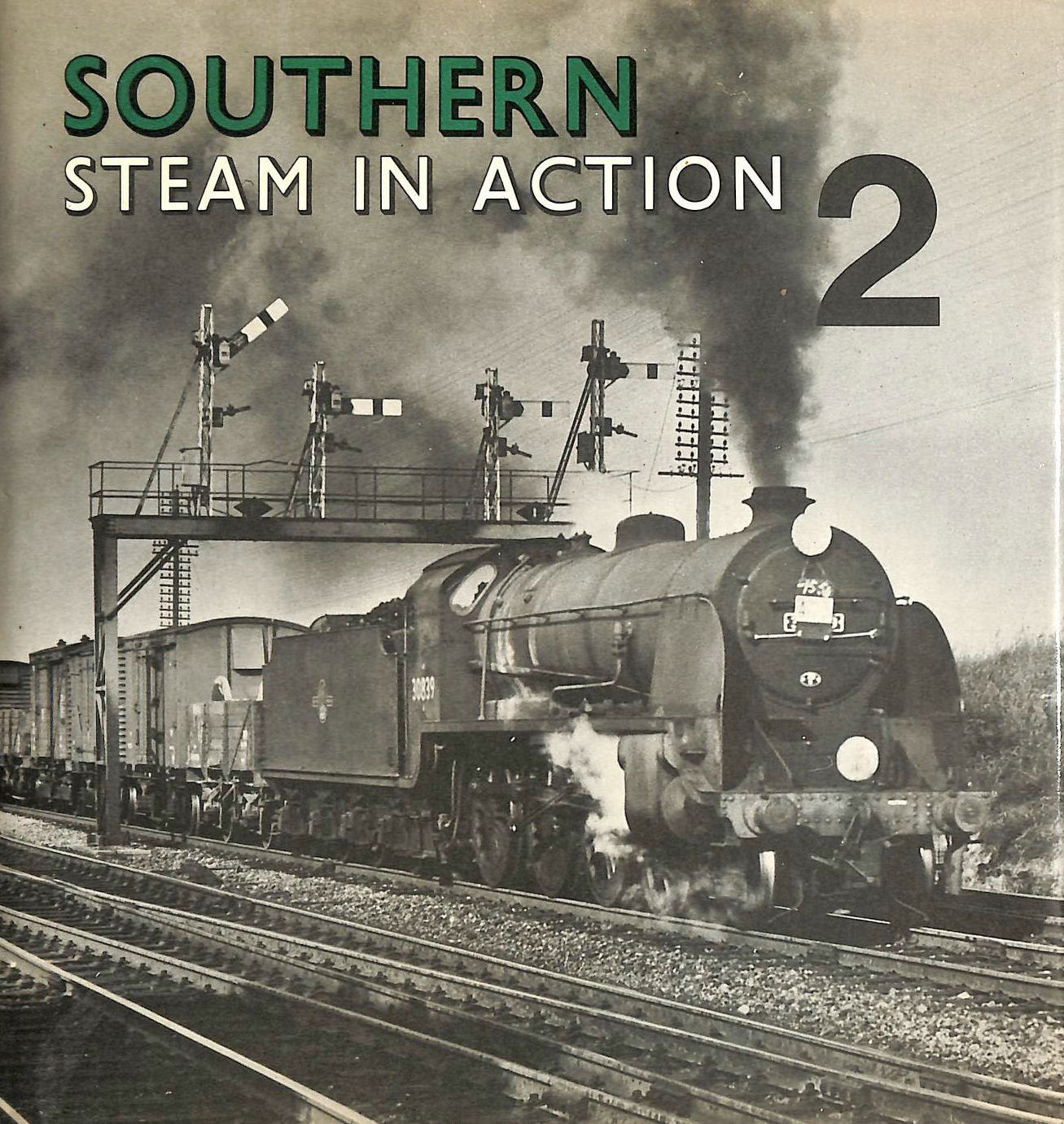 Image for Southern Steam in Action: v. 2