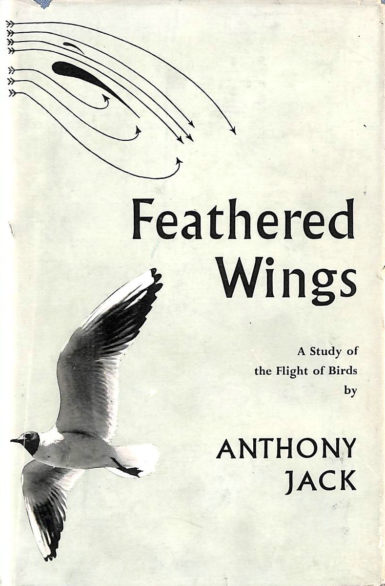 Image for Feathered Wings