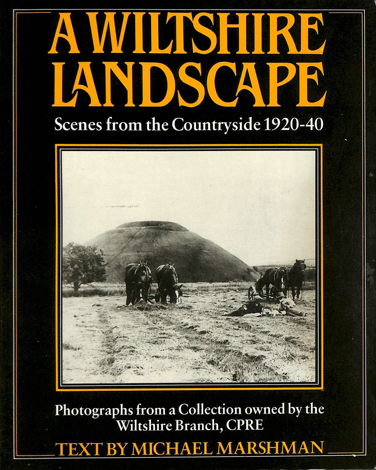 Image for Wiltshire Landscape: Scenes from the Countryside, 1920-40