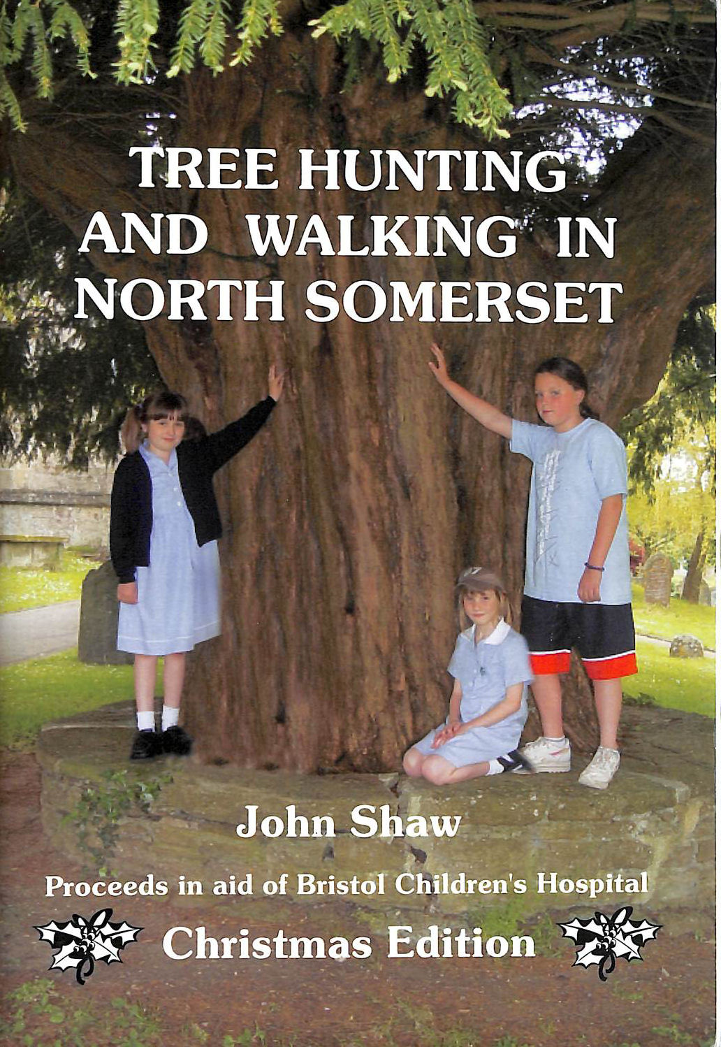 Image for Tree Hunting and Walking in North Somerset