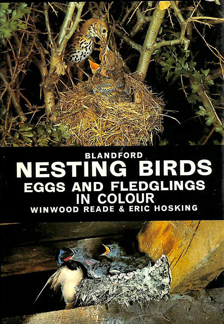 Image for Nesting Birds, Eggs and Fledglings (Colour)