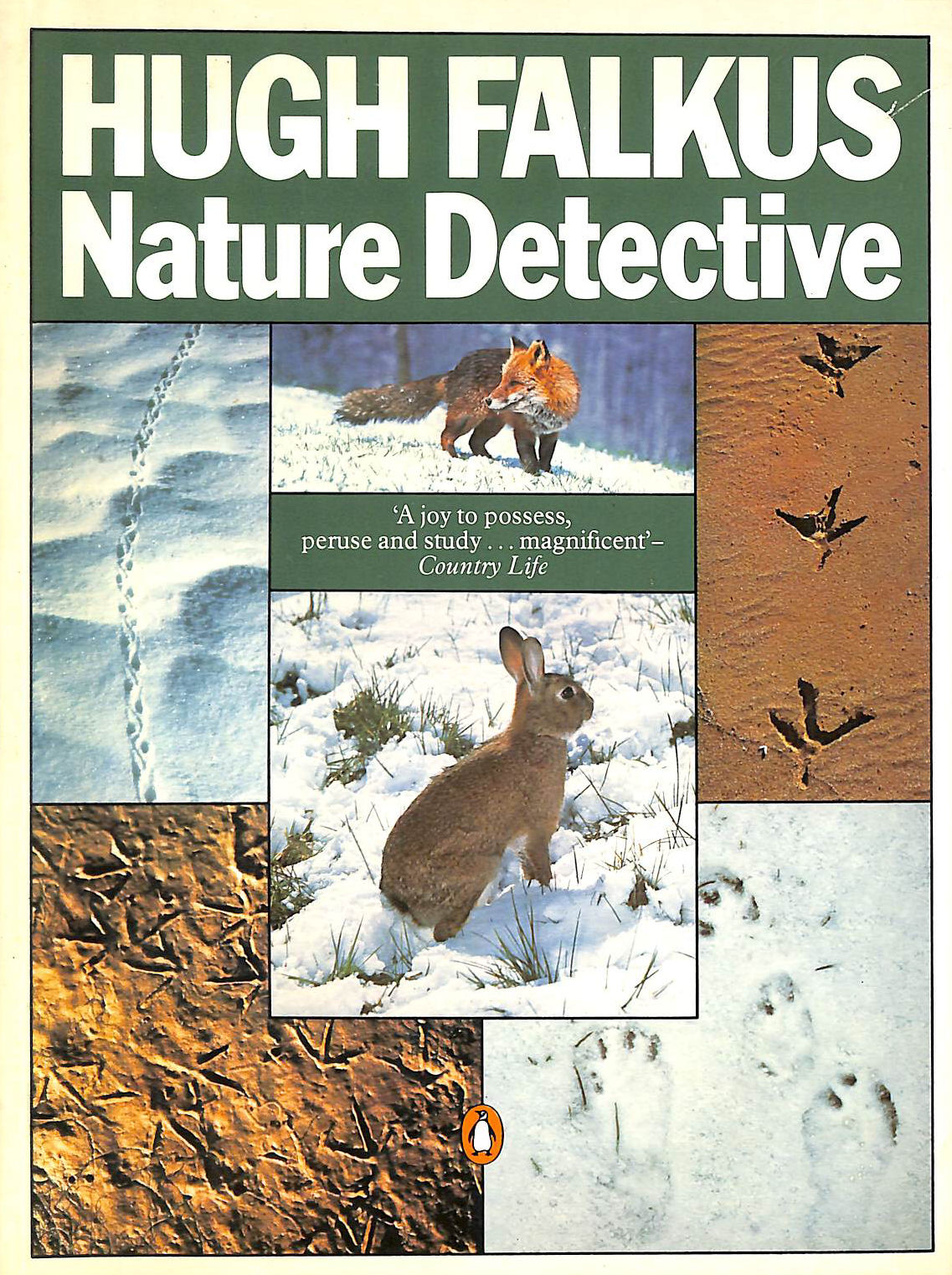 Image for Nature Detective