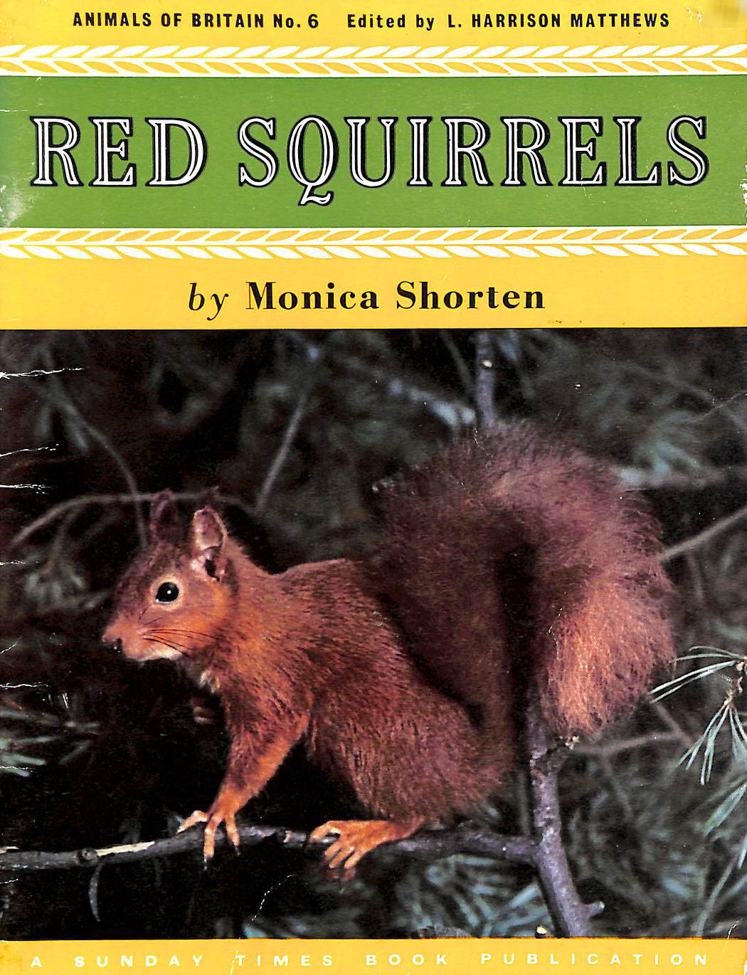 Image for Red squirrels (Animals of Britain series no 6)