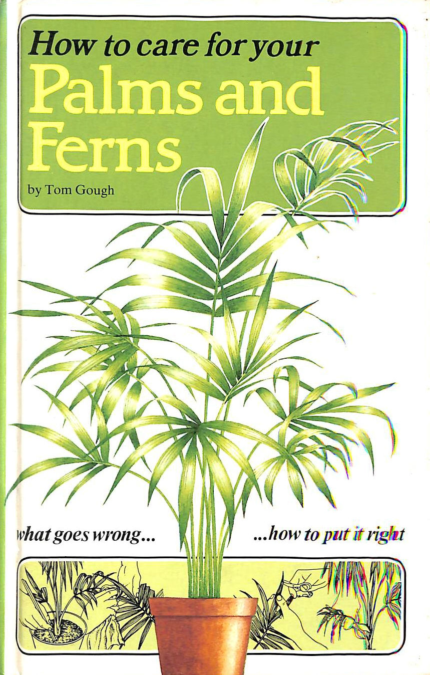 Image for How to Care for Your Palms and Ferns (How to Care for Your Houseplants)