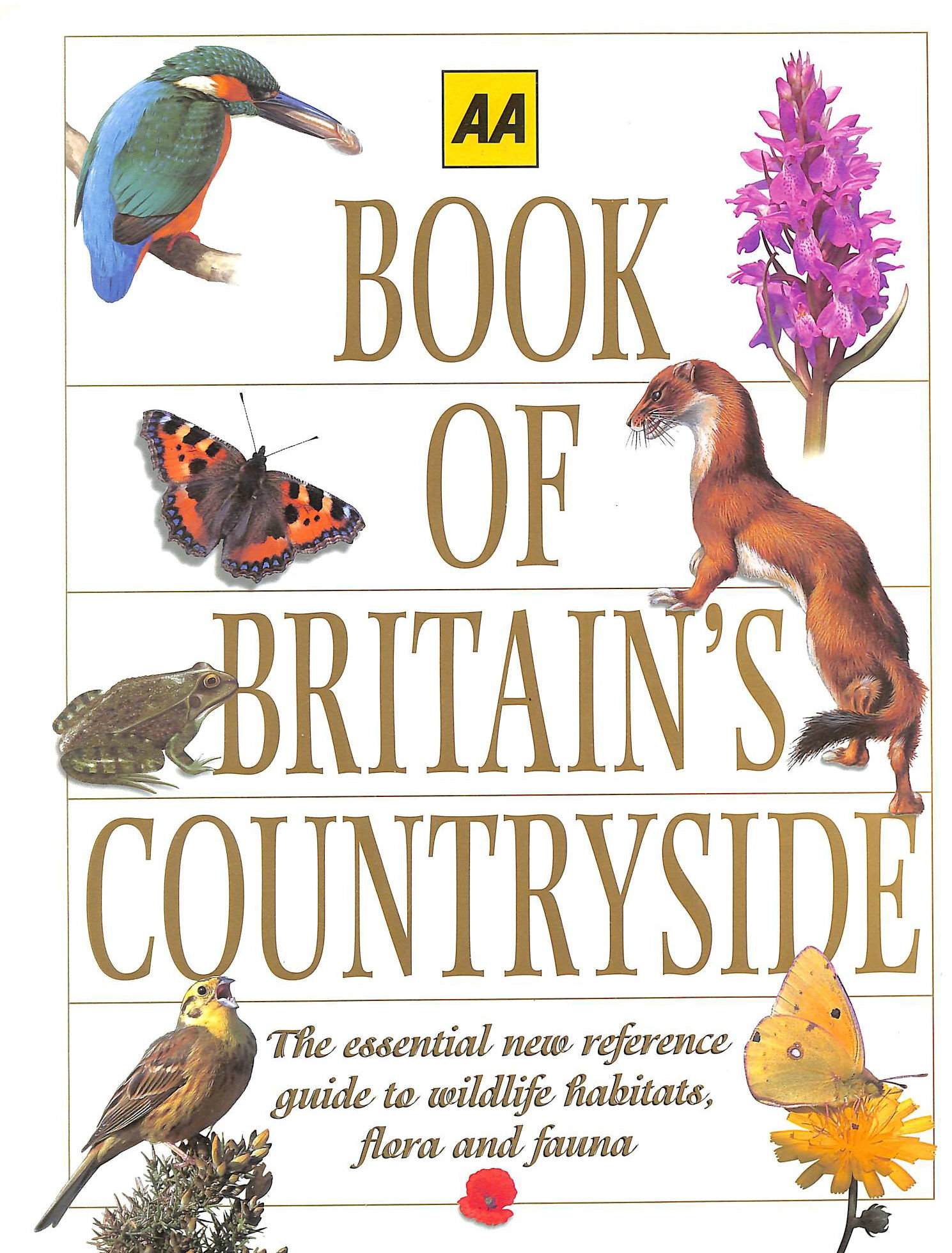 Image for AA Book of Britain's Countryside (AA Illustrated Reference Books)