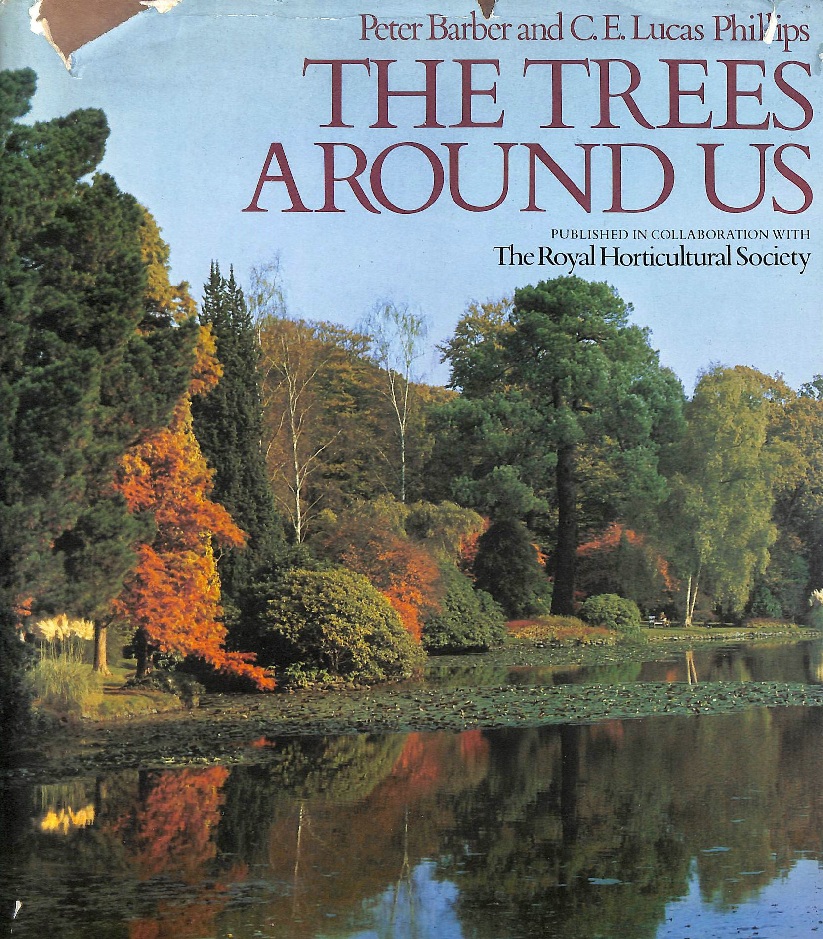 Image for Trees Around Us