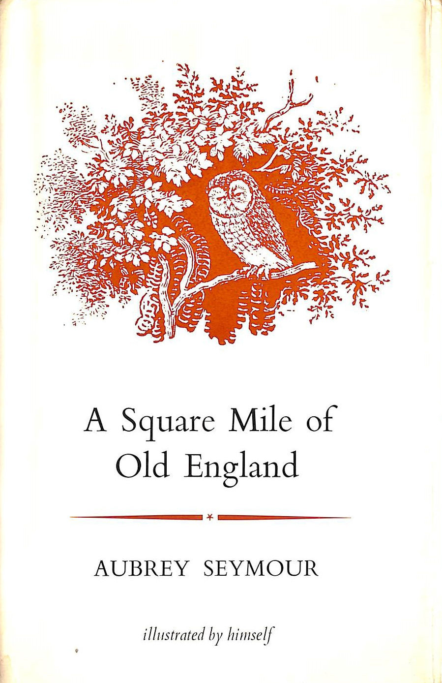 Image for Square Mile of Old England