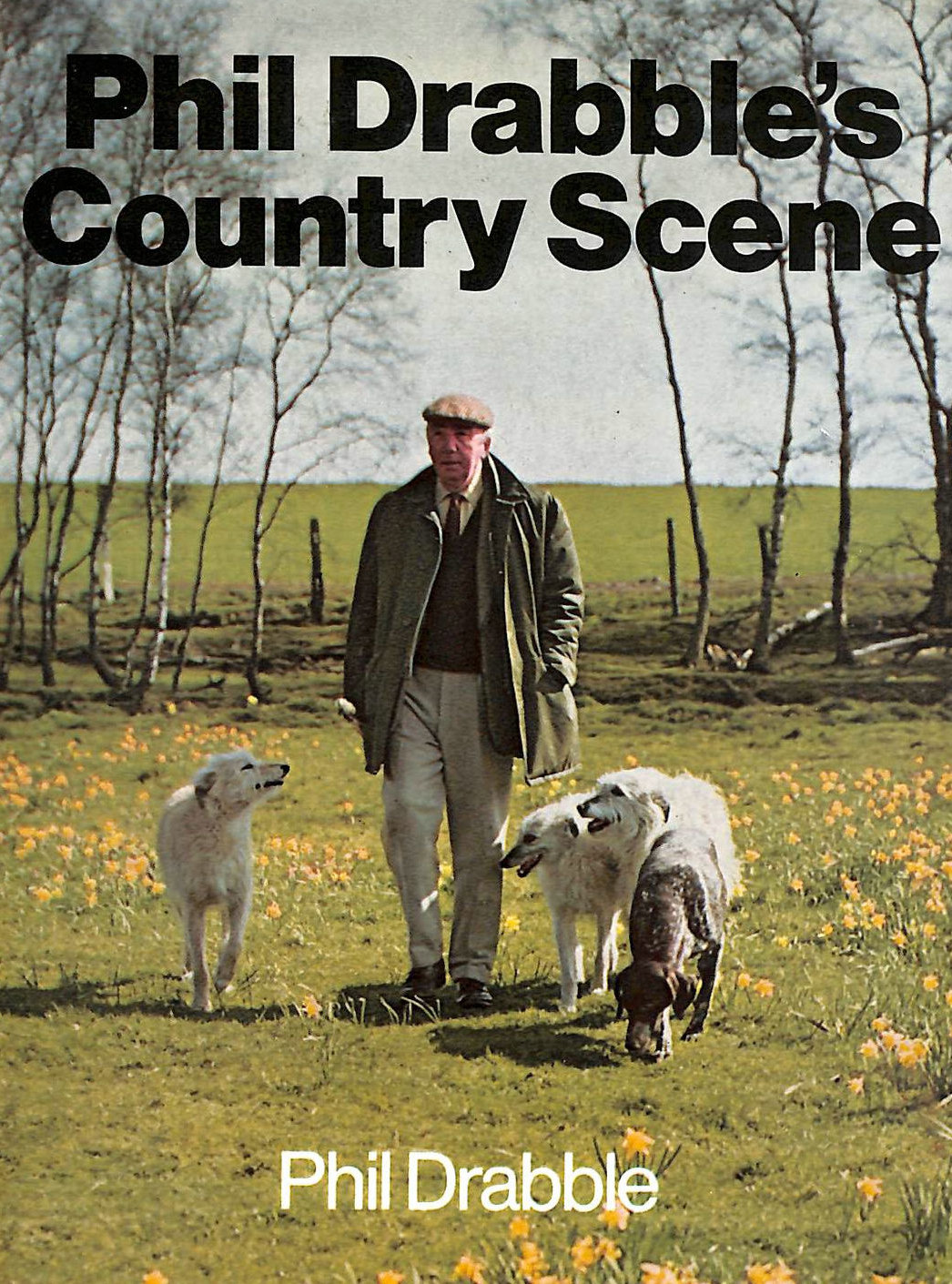 Image for Phil Drabbles Country Scene