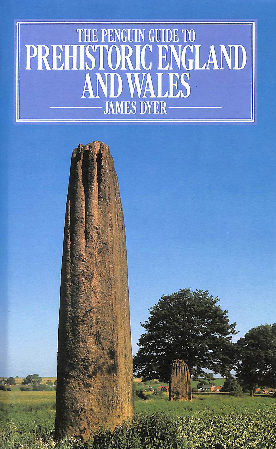 Image for The Penguin Guide to Prehistoric England and Wales