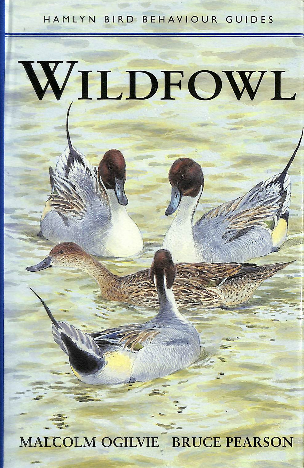 Image for Wildfowl (Hamlyn Bird Behaviour Guides)