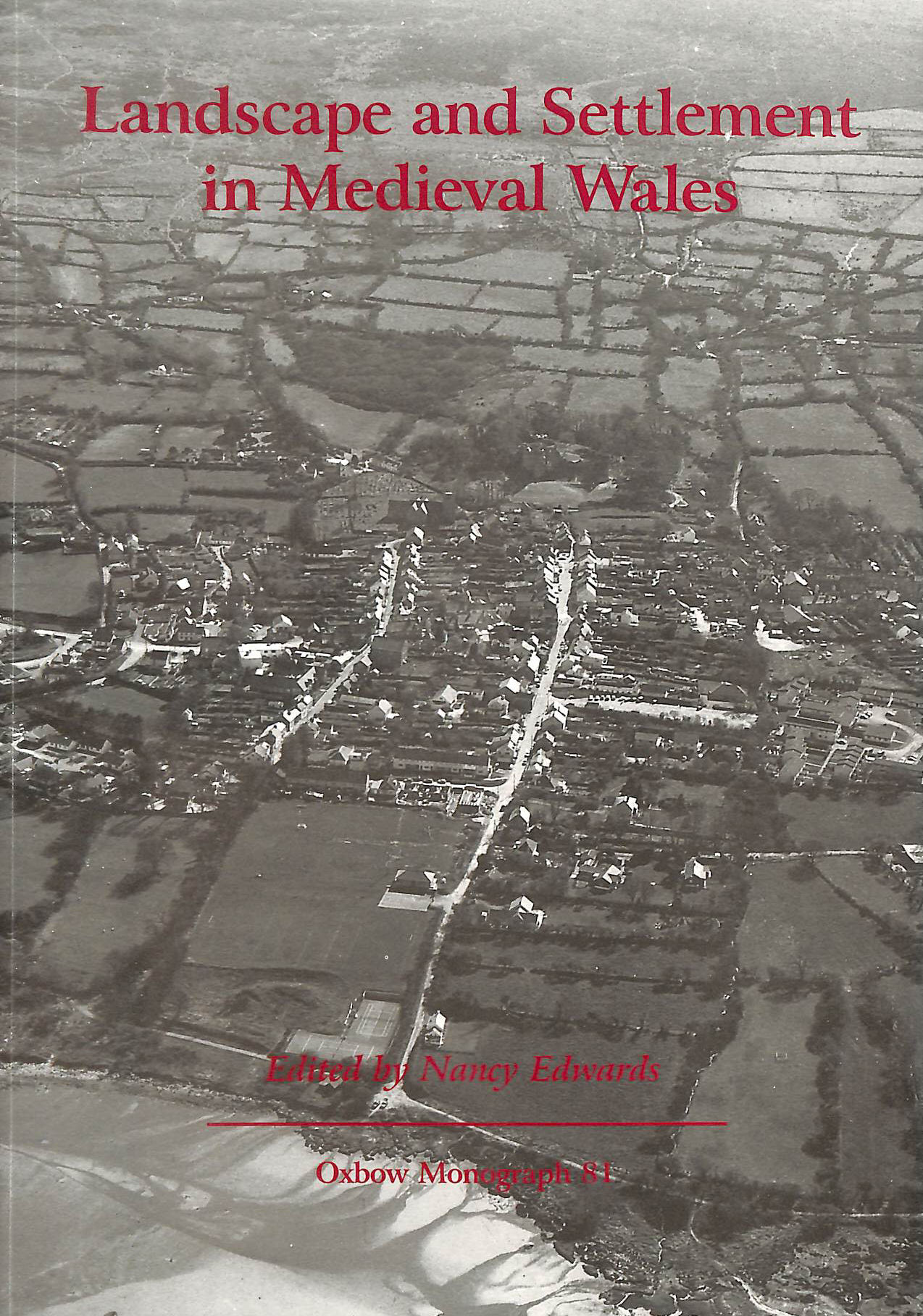 Image for Landscape and Settlement in Medieval Wales (Oxbow Monographs in Archaeology)
