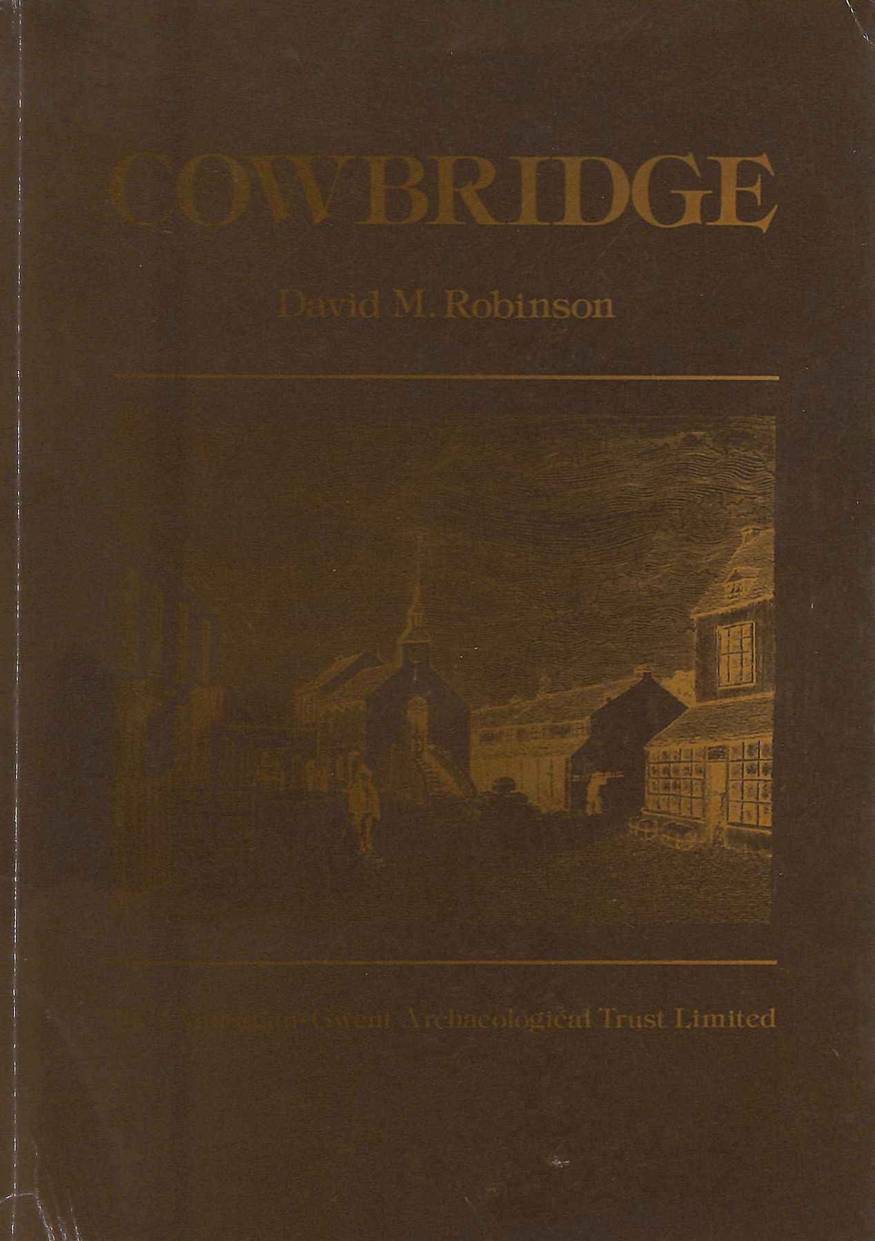 Image for Cowbridge: The Archaeology and Topography of a Small Market Town in the Vale of Glamorgan (Town survey)