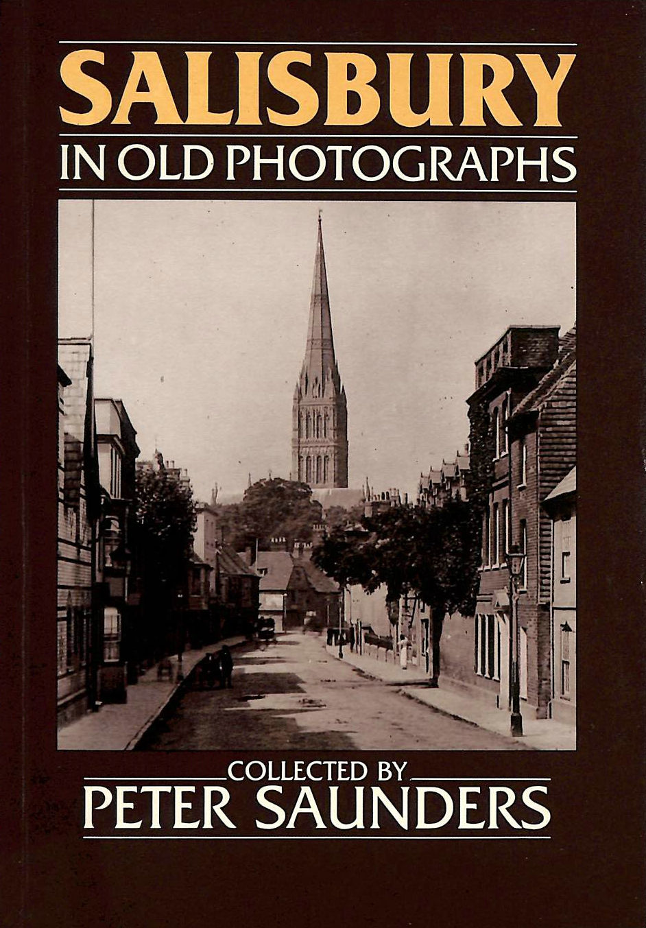 Image for Around Salisbury in Old Photographs