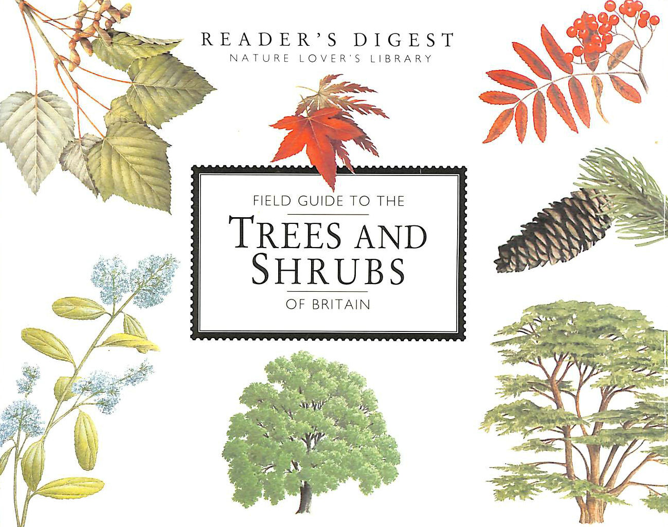 Image for Field Guide to the Trees and Shrubs of Britain (Nature Lover's Library)