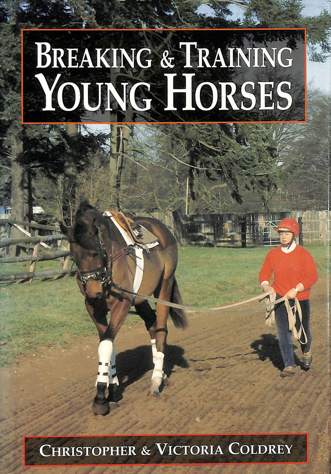 Image for Breaking and Training Young Horses