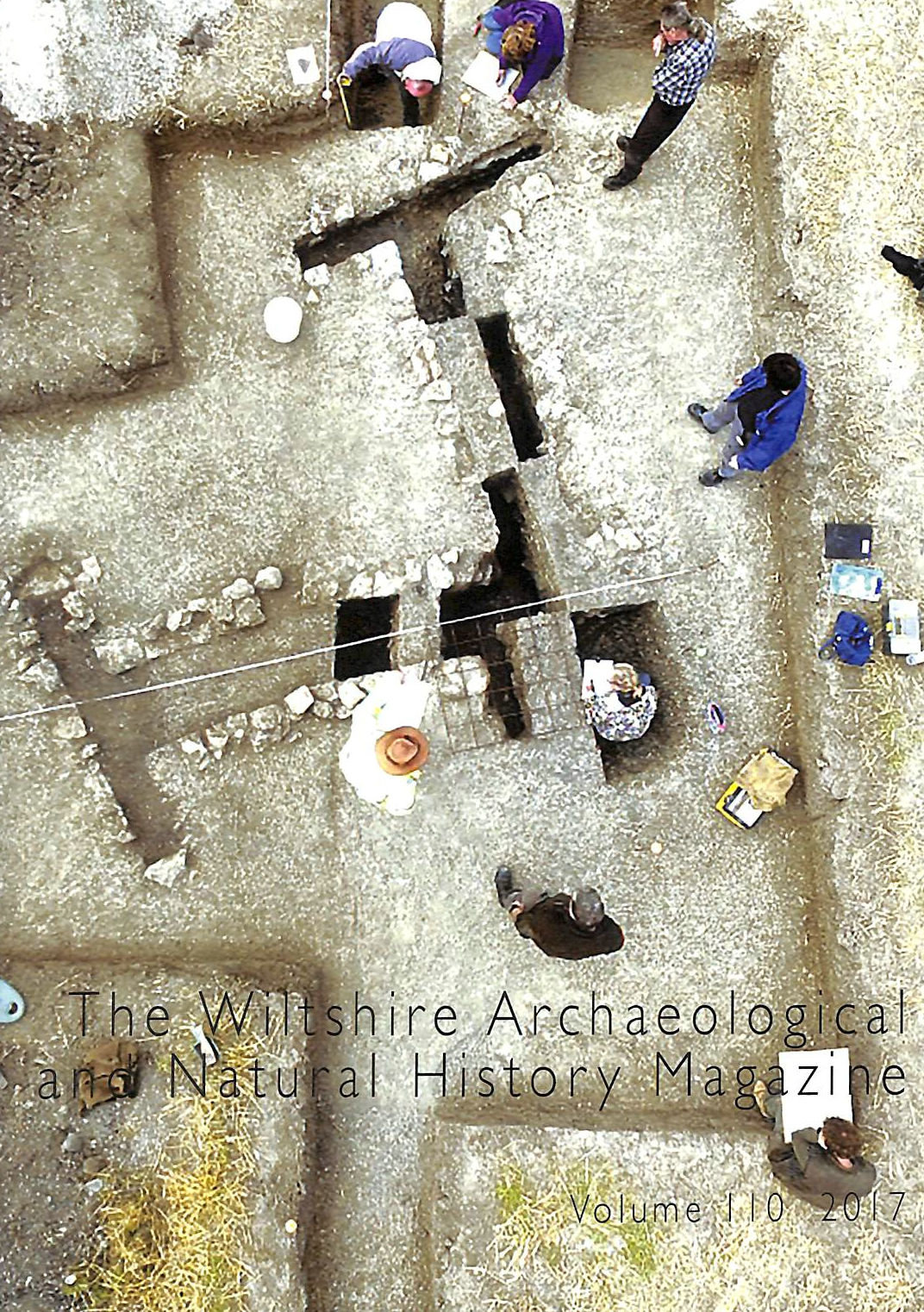 Image for The Wiltshire Archaeological and Natural History Magazine, Volume 110