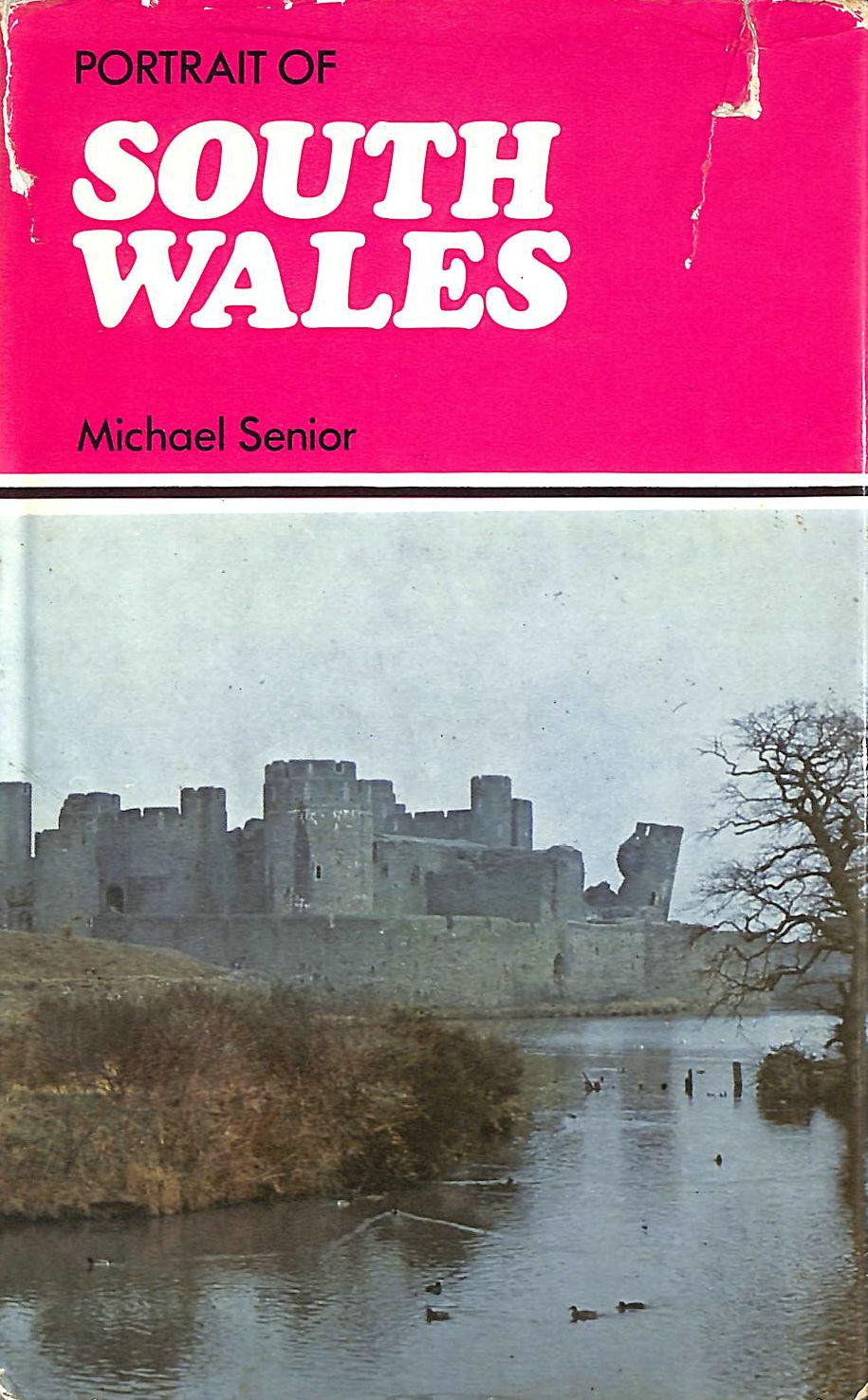 Image for Portrait of South Wales