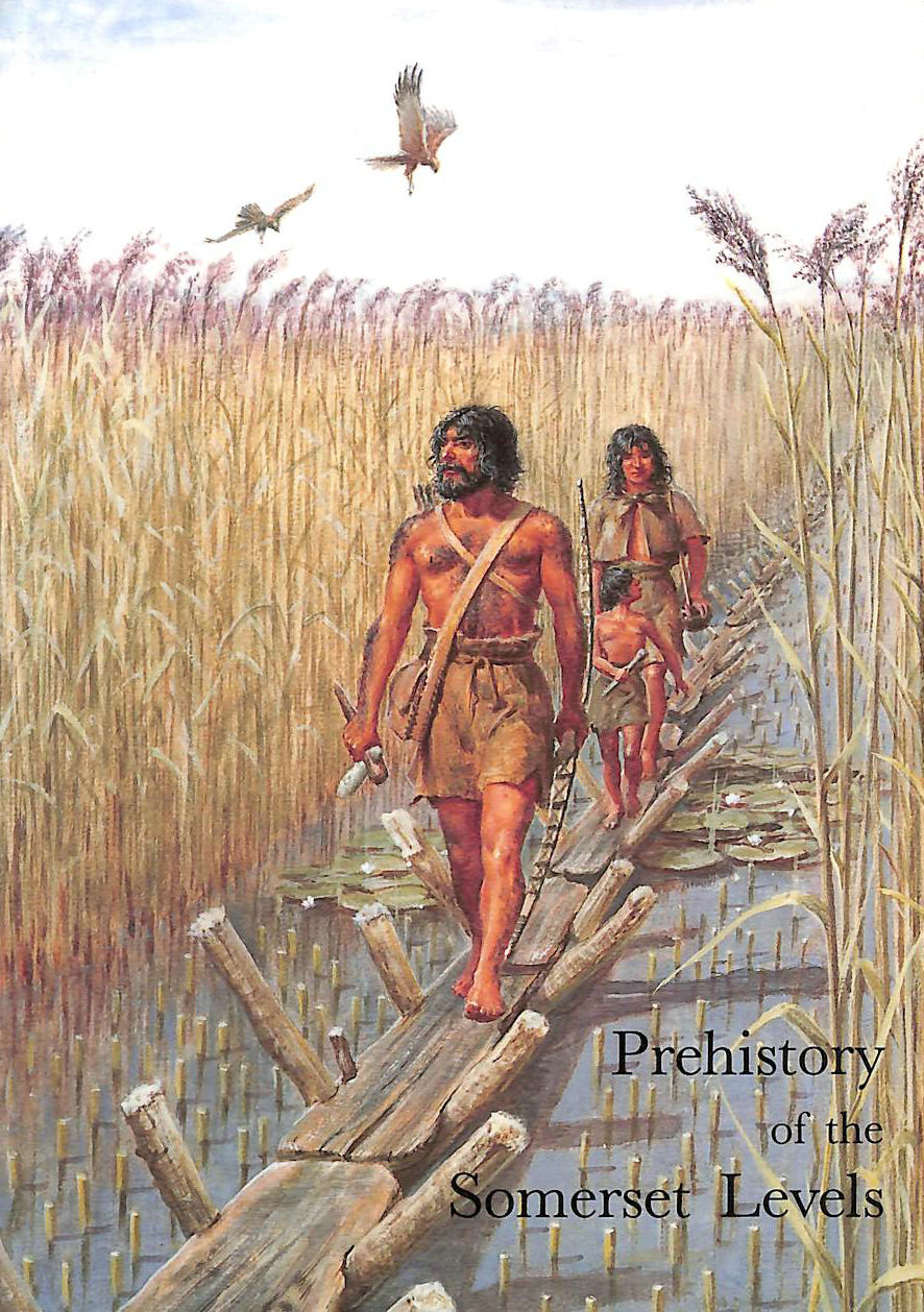 Image for Prehistory of the Somerset Levels