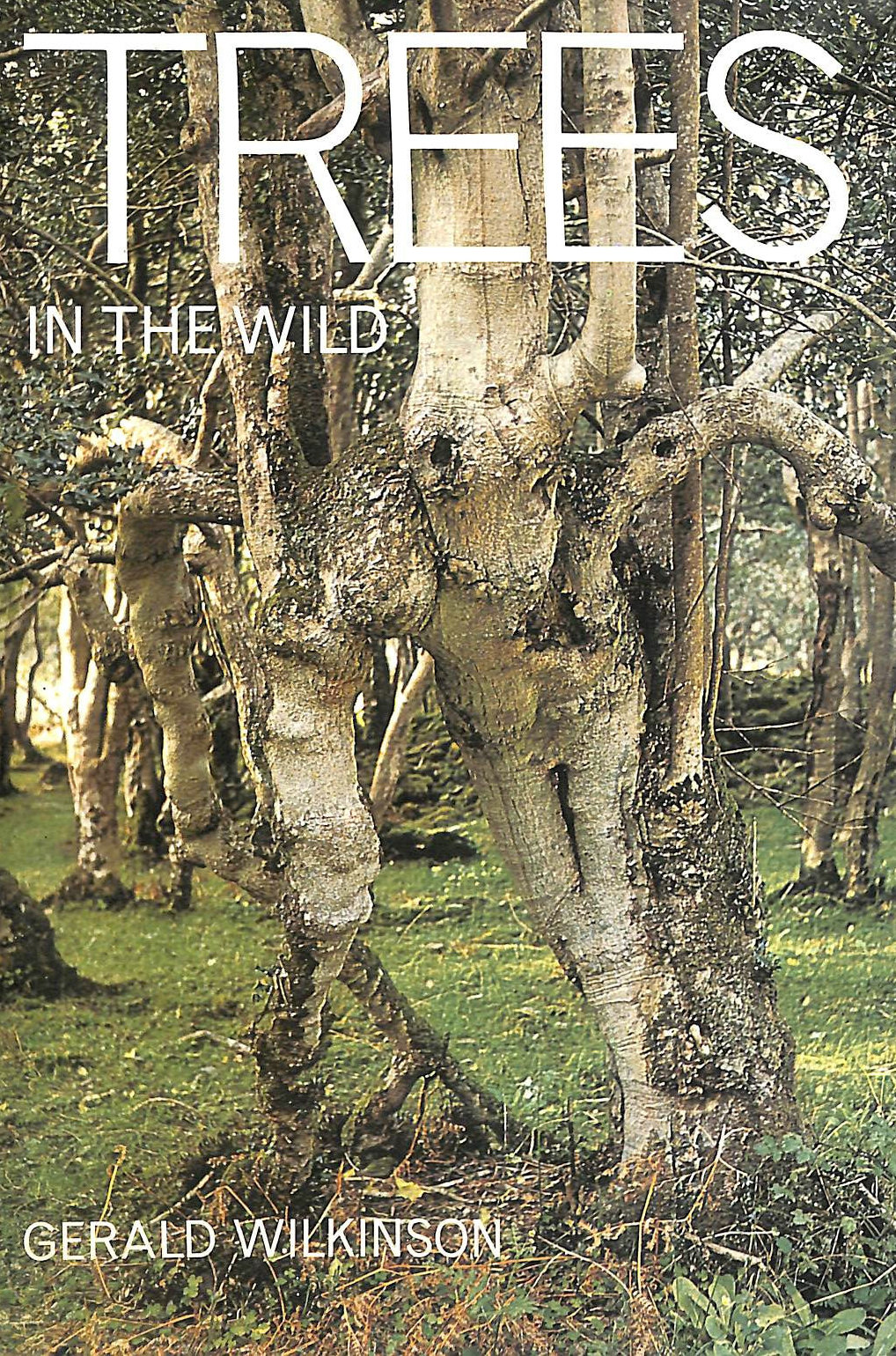 Image for Trees in the Wild
