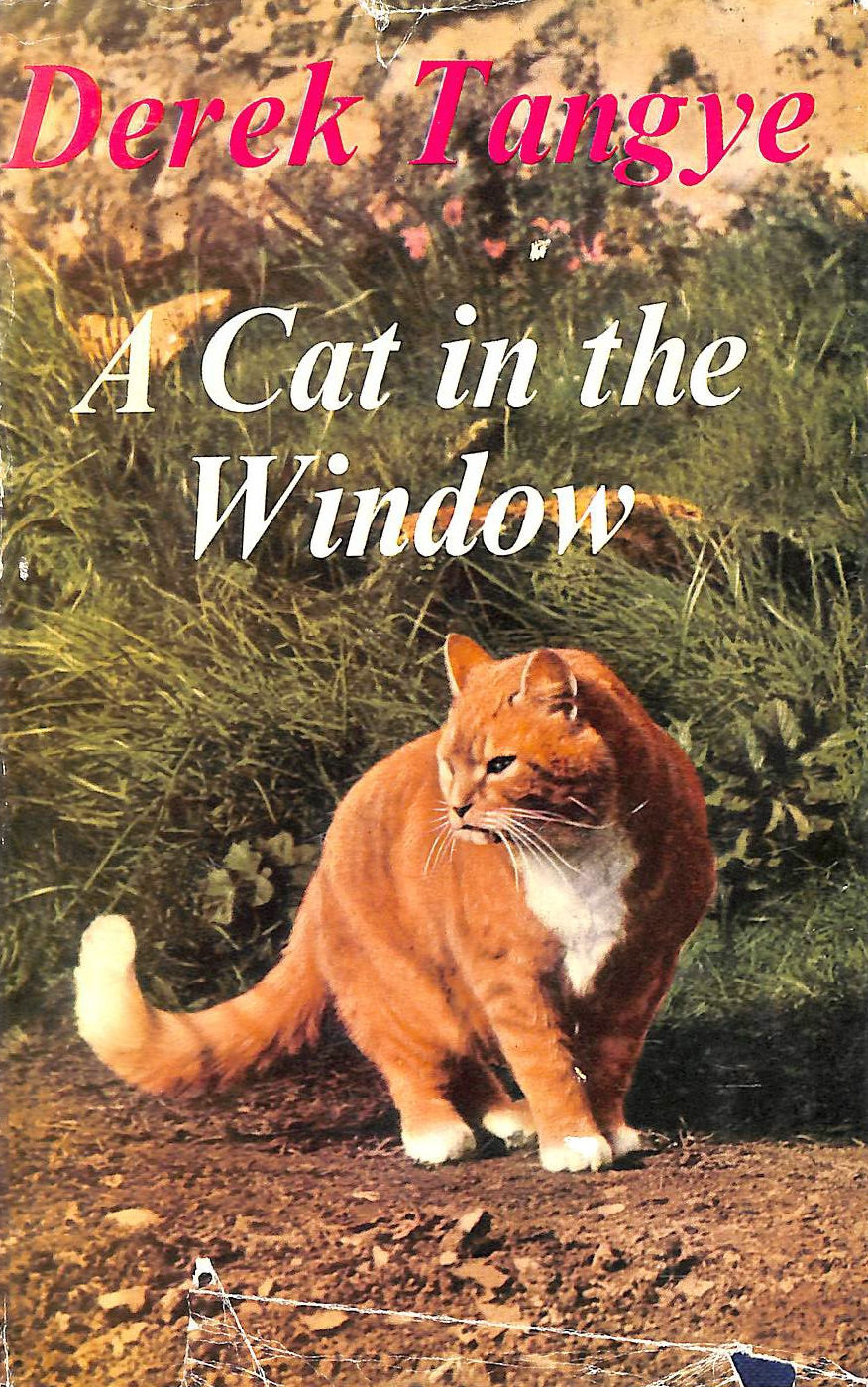 Image for A Cat in my Window: