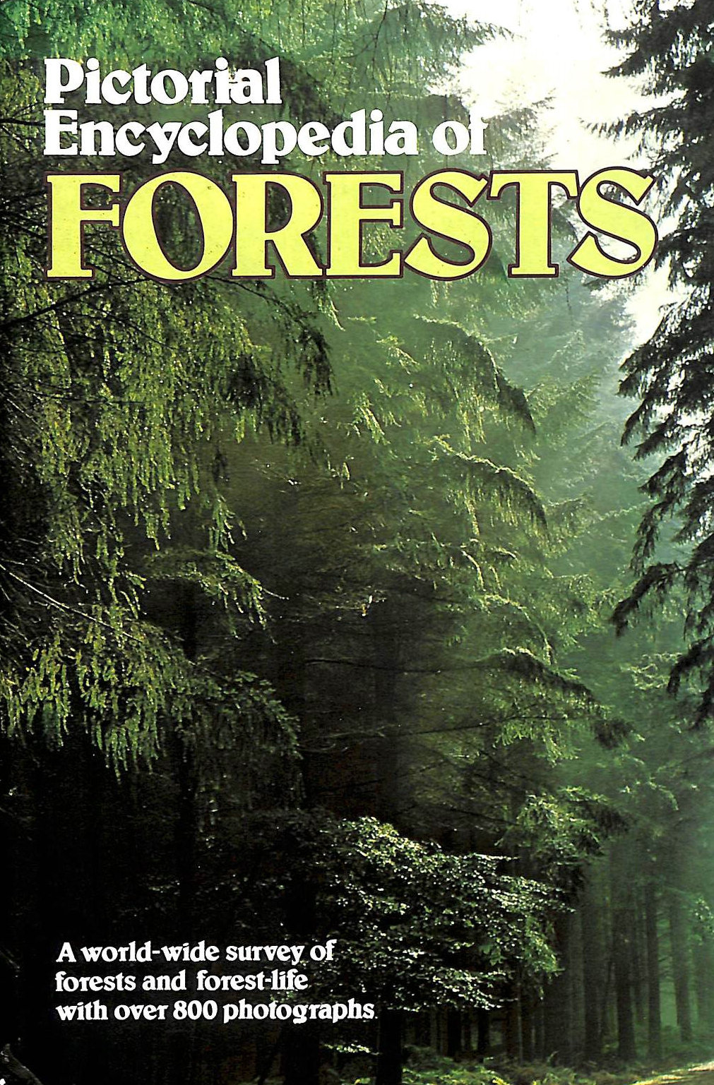 Image for Pictorial Encyclopaedia of Forests